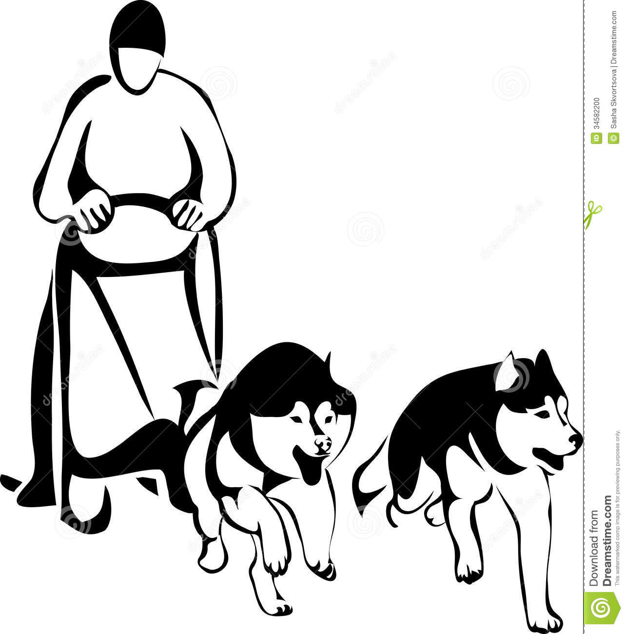 Sled Racing Dogs From Two Siberian Huskies Stock Vector