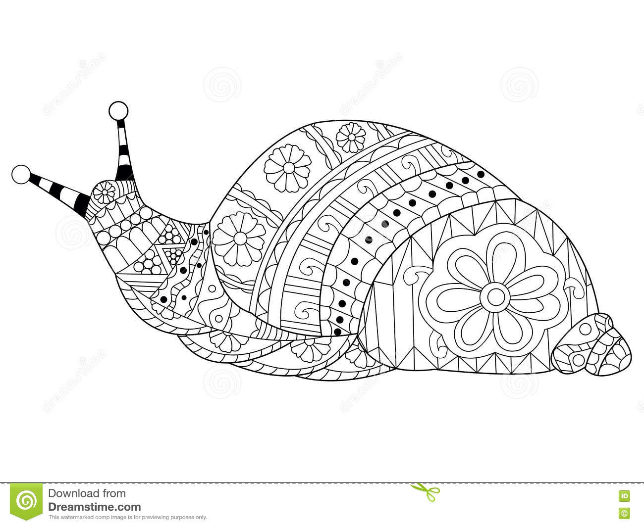 Snail Coloring Vector For Adults Stock Vector