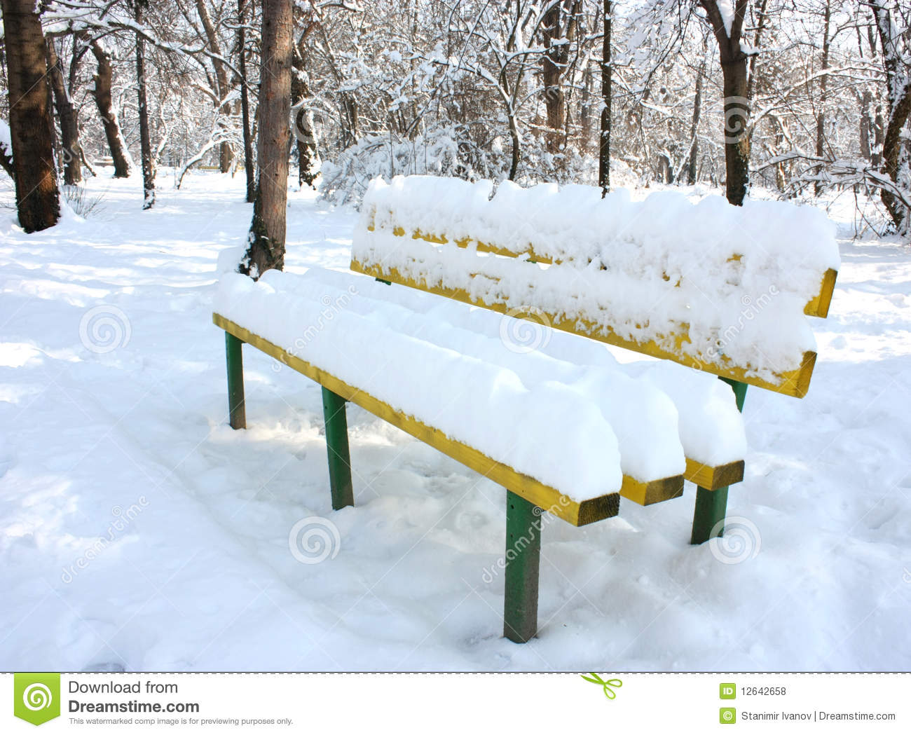 Snow Covered Bench Stock Photo Image Of Tree Snow