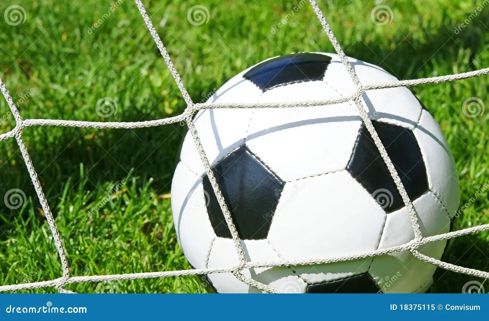 Soccer Ball In Goal Net Stock Image Image Of Grass