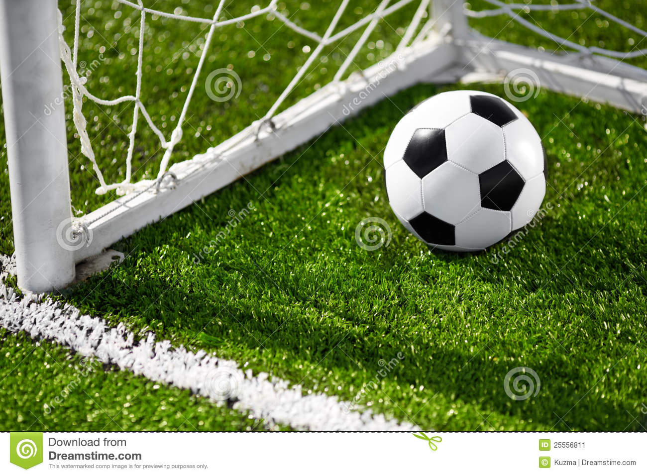 Soccer Ball And Goal Net Stock Image Image Of Goals