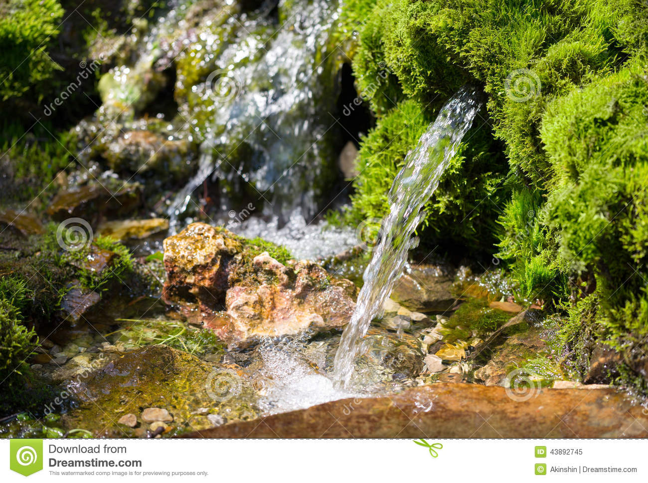 Source Of Spring Water Stock Photo