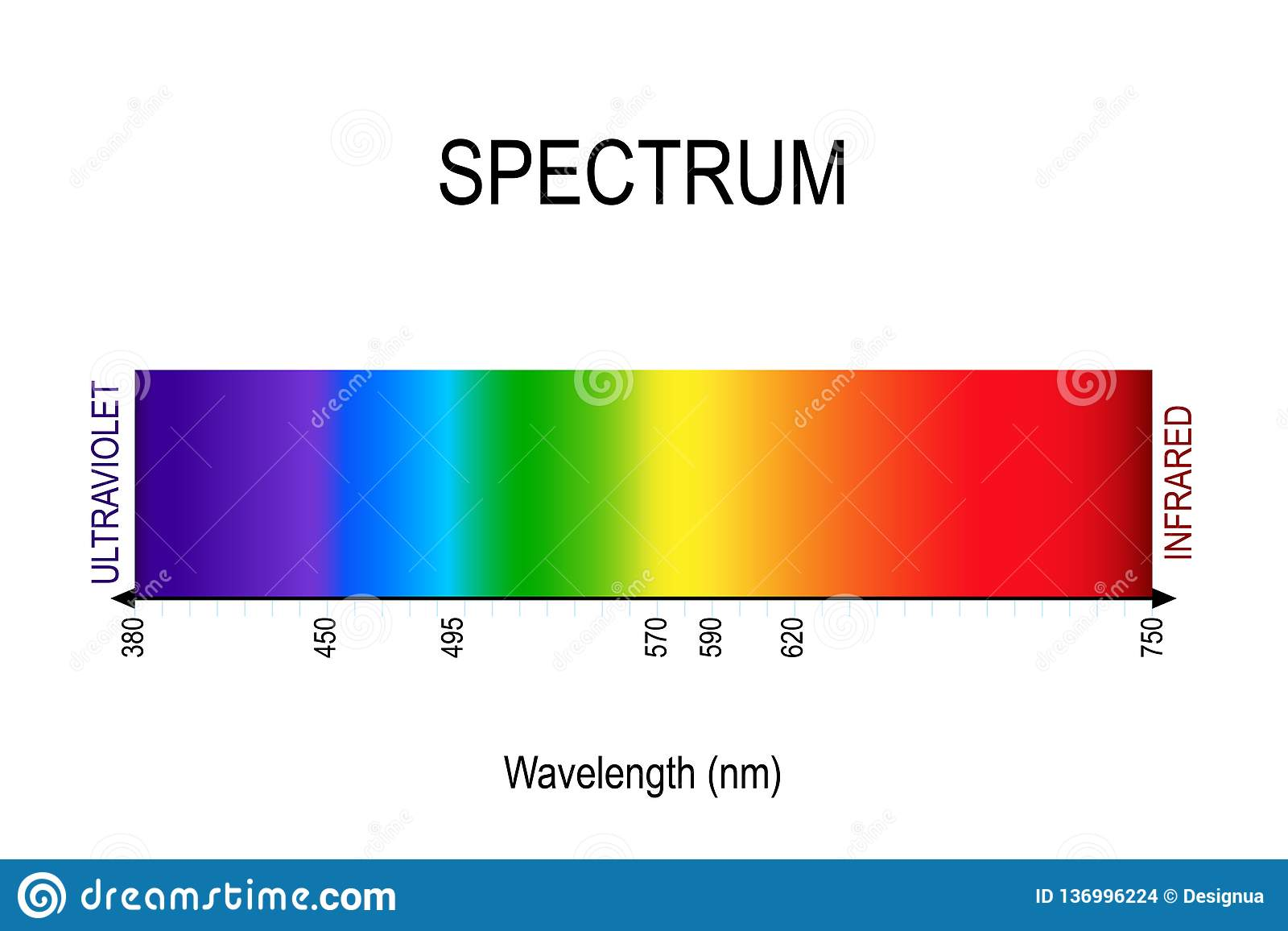 Spectrum Visible Light Infrared And Ultraviolet