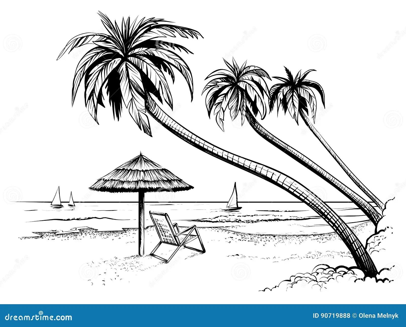 Spiaggia Del Mare O Dell Oceano Con Le Palme L Ombrello