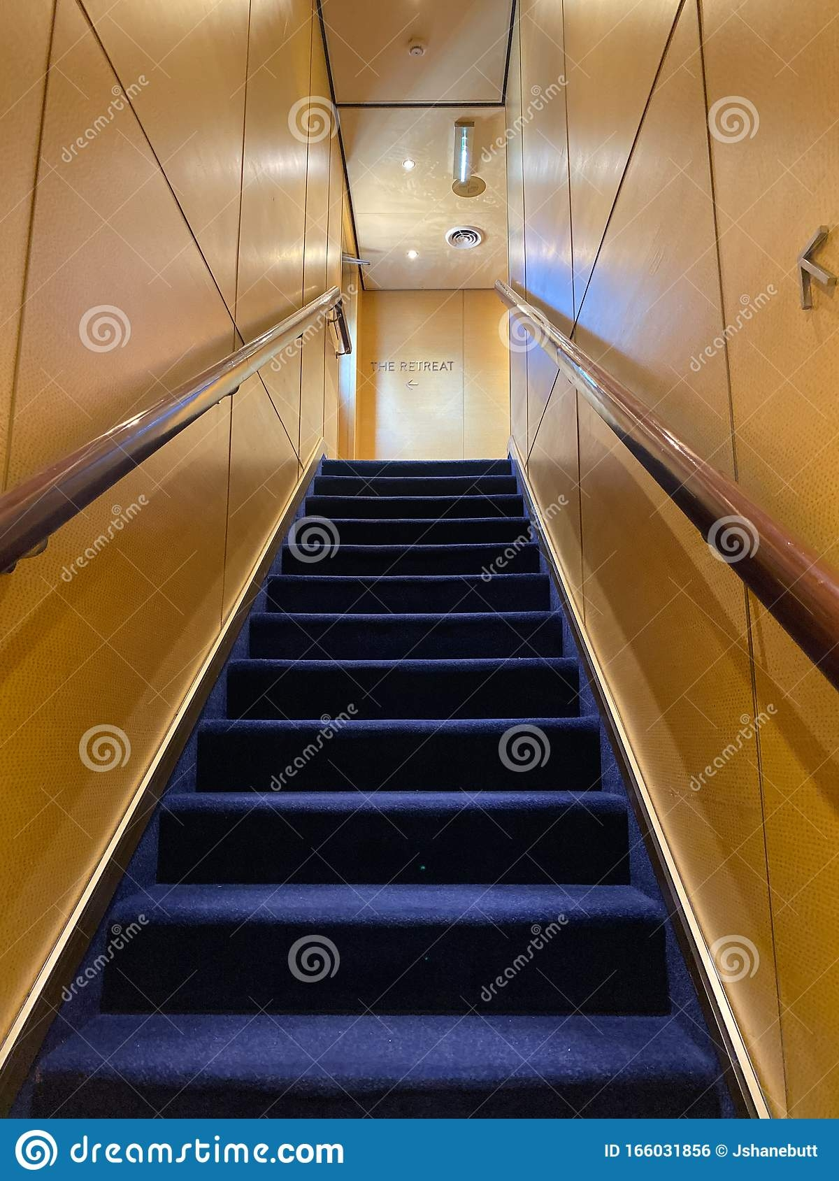 A Stairway On A Cruise Ship With Blue Carpet And Cream Colored   Blue Carpet On Stairs   Wooden   Grey Stair White Wall   Antelope   Geometric   Gray
