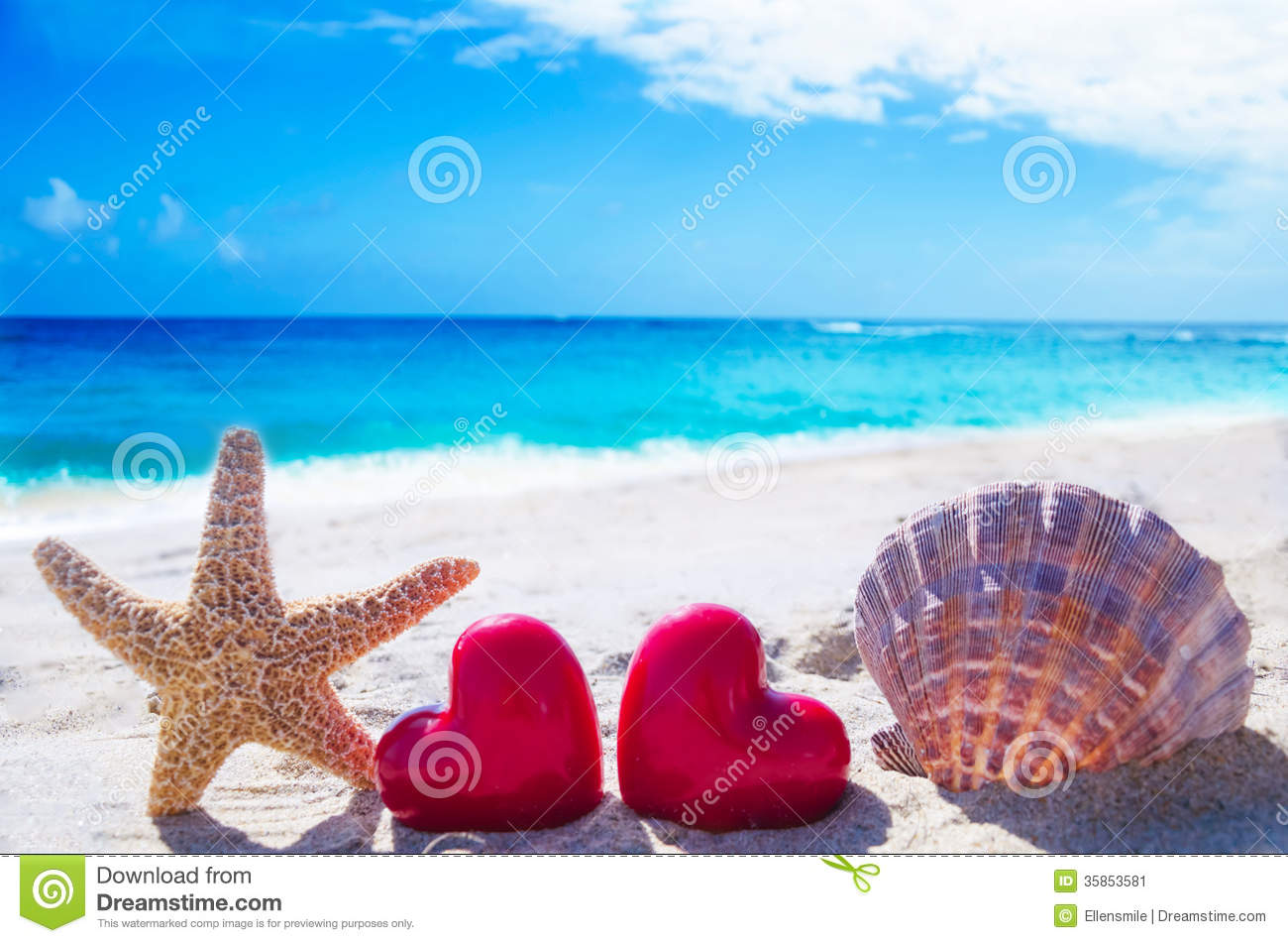 Starfish And Seashell With Hearts By The Ocean Stock Image