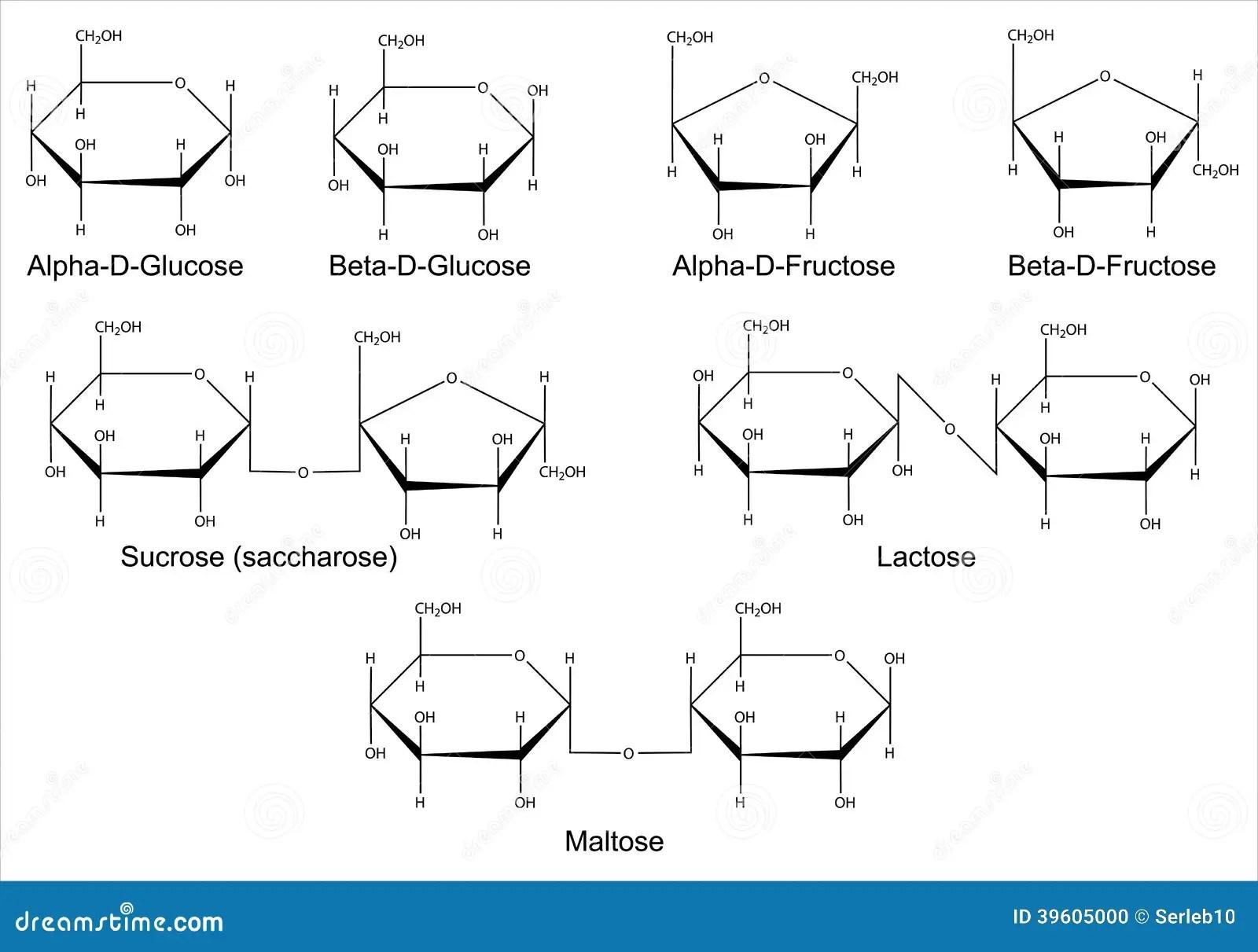 Structural Formulas Of The Main Saccharides Stock Vector