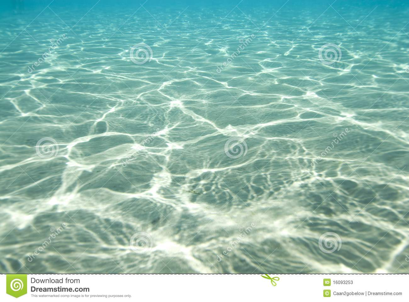 Sunlight Reflections Underwater Stock Image Image Of