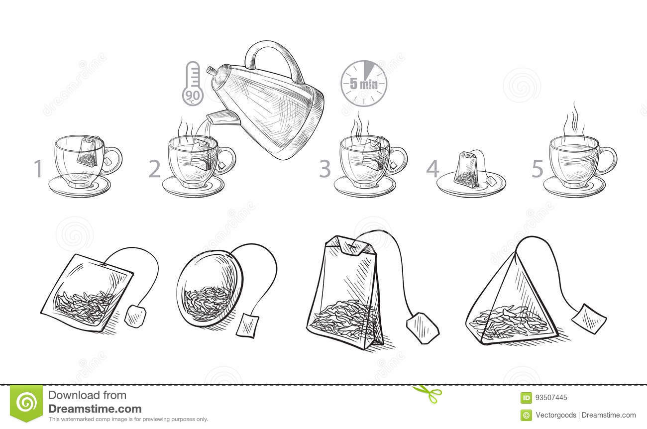Tea Bag Brewing Cooking Directions Stock Vector