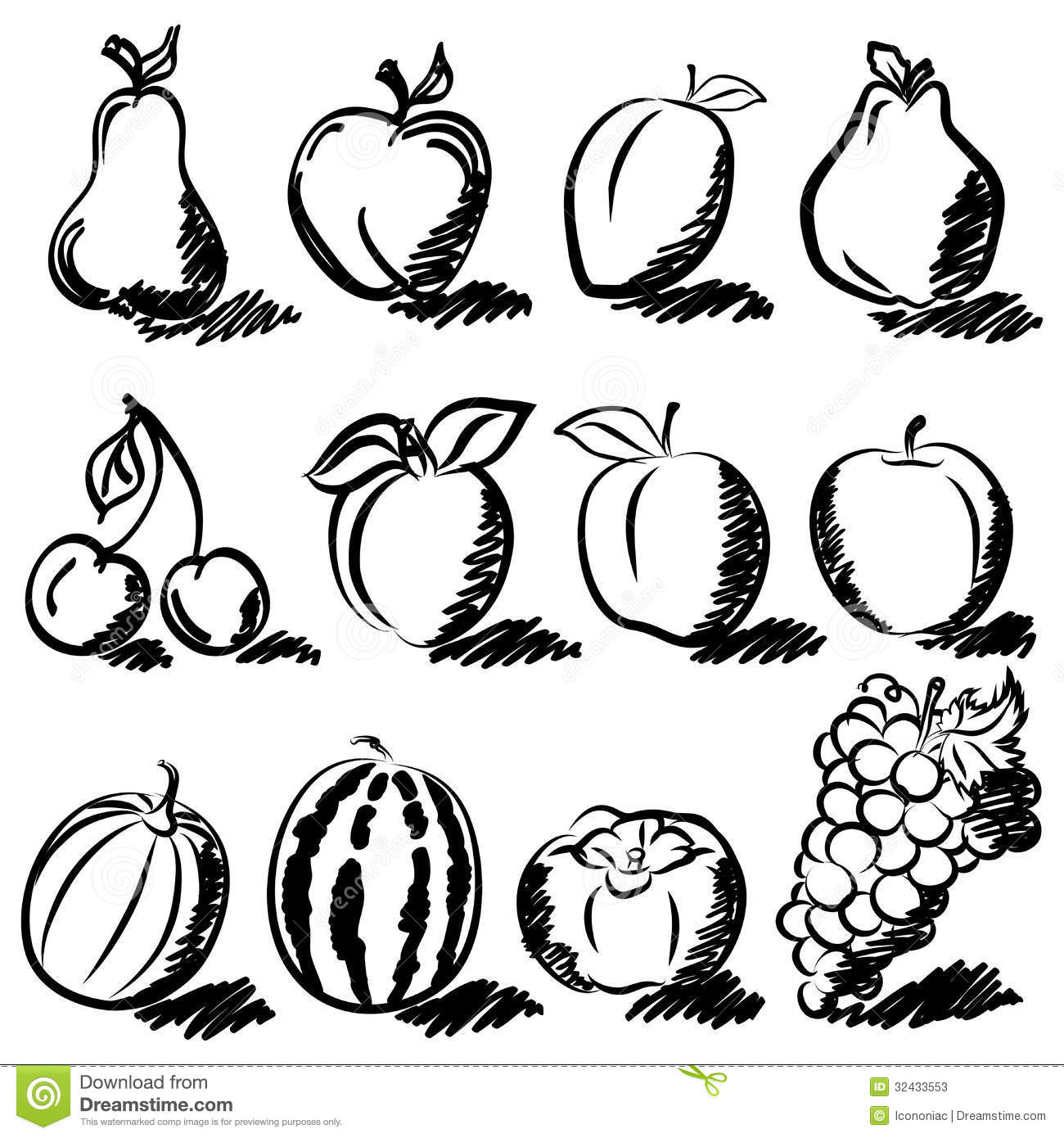Temperate Fruits Sketch Drawing Set Stock Illustration