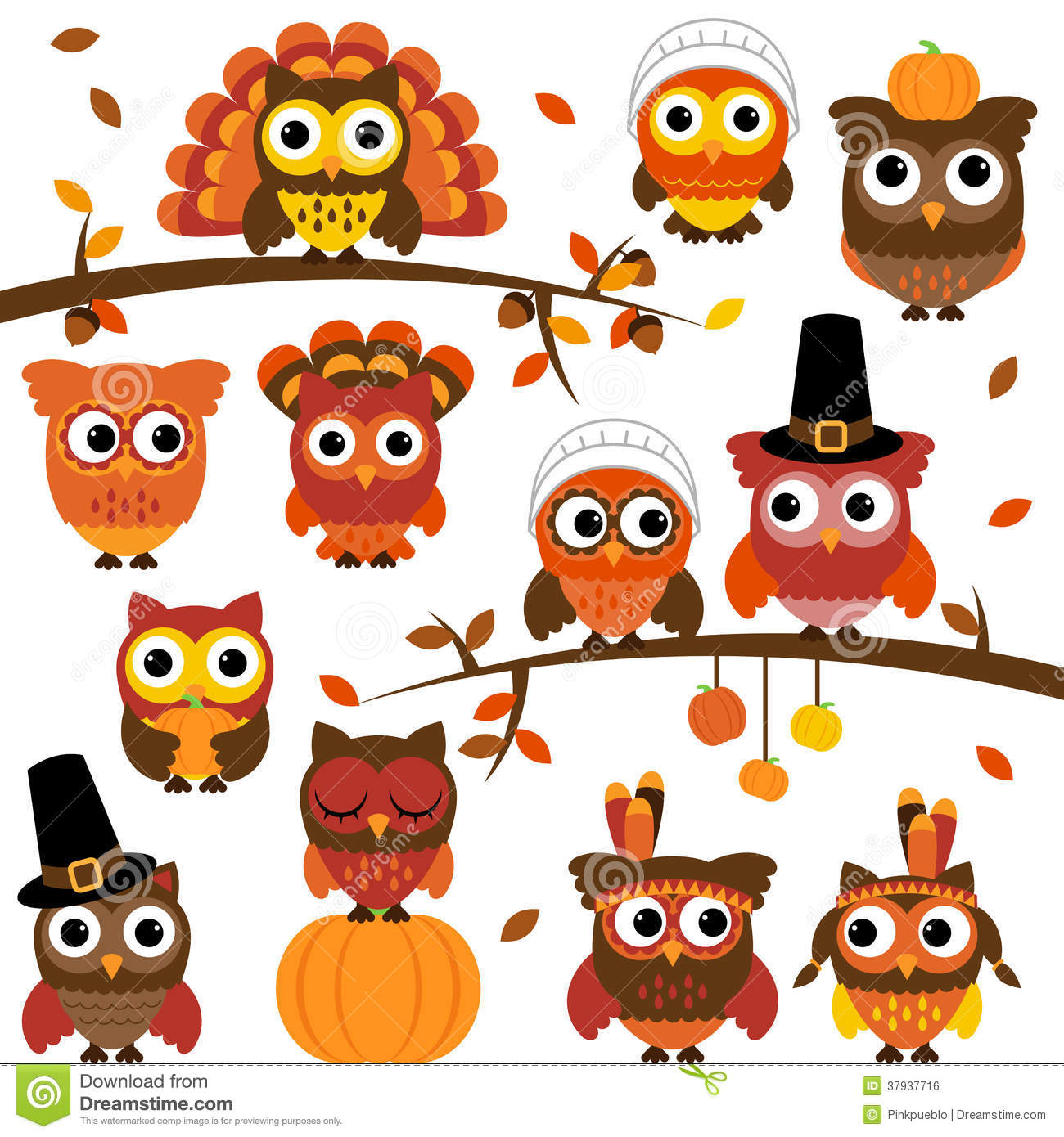 Thanksgiving And Autumn Themed Vector Owl Collection Stock