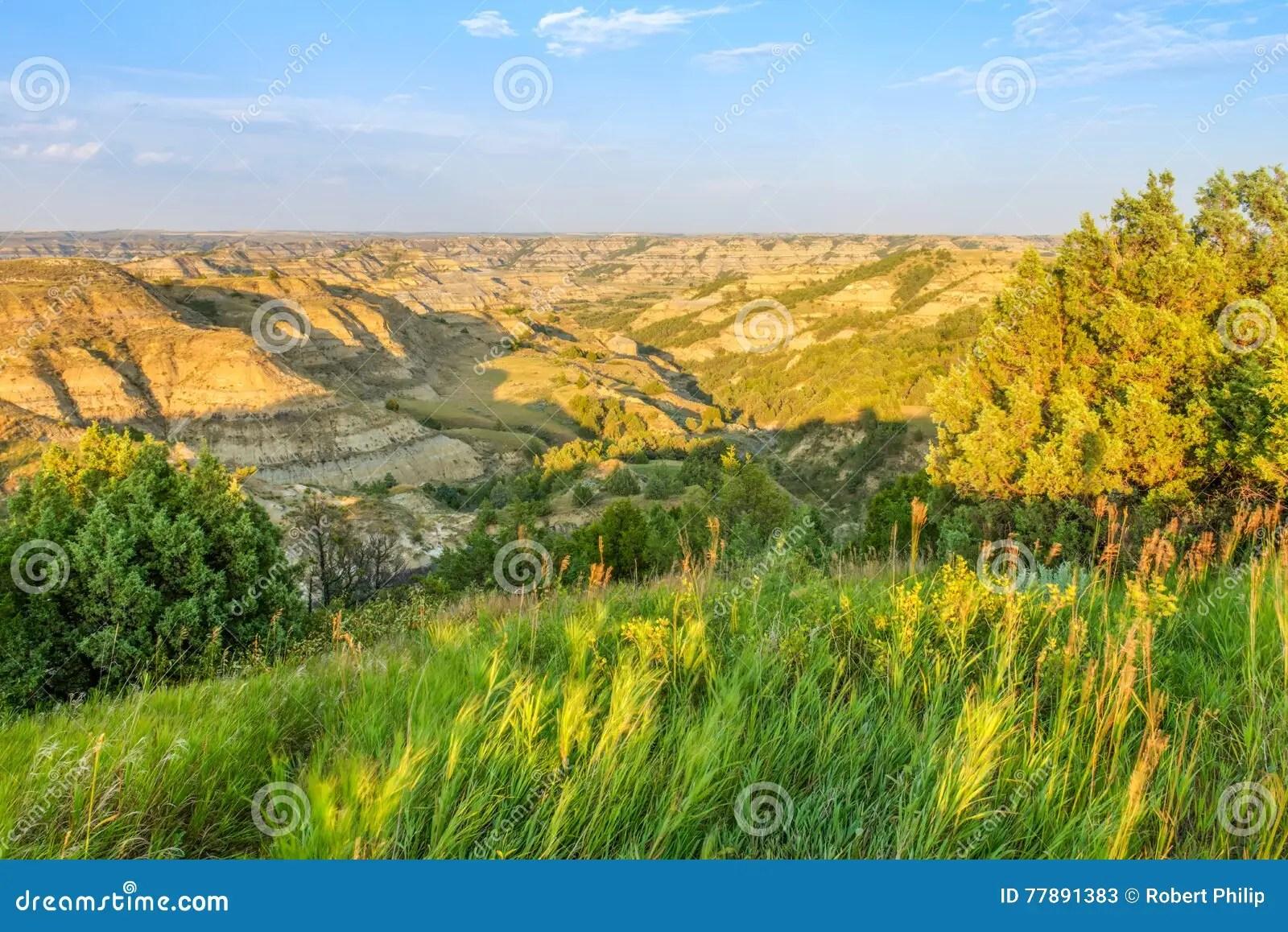 Theodore Roosevelt National Park Stock Image