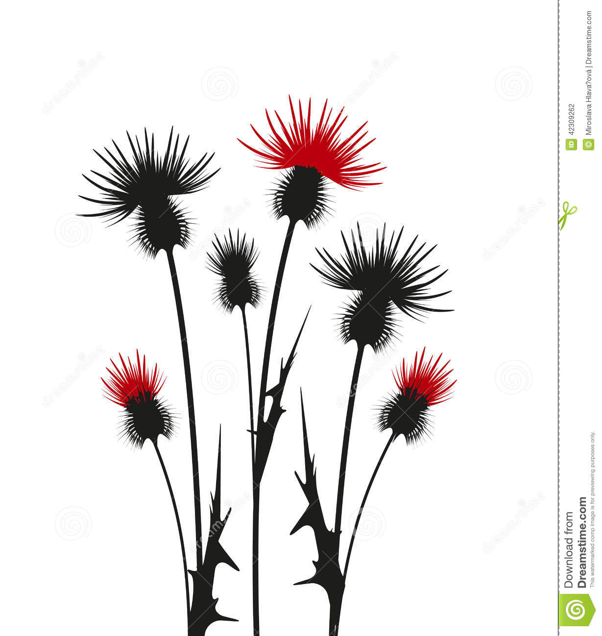 Thistle Stock Vector