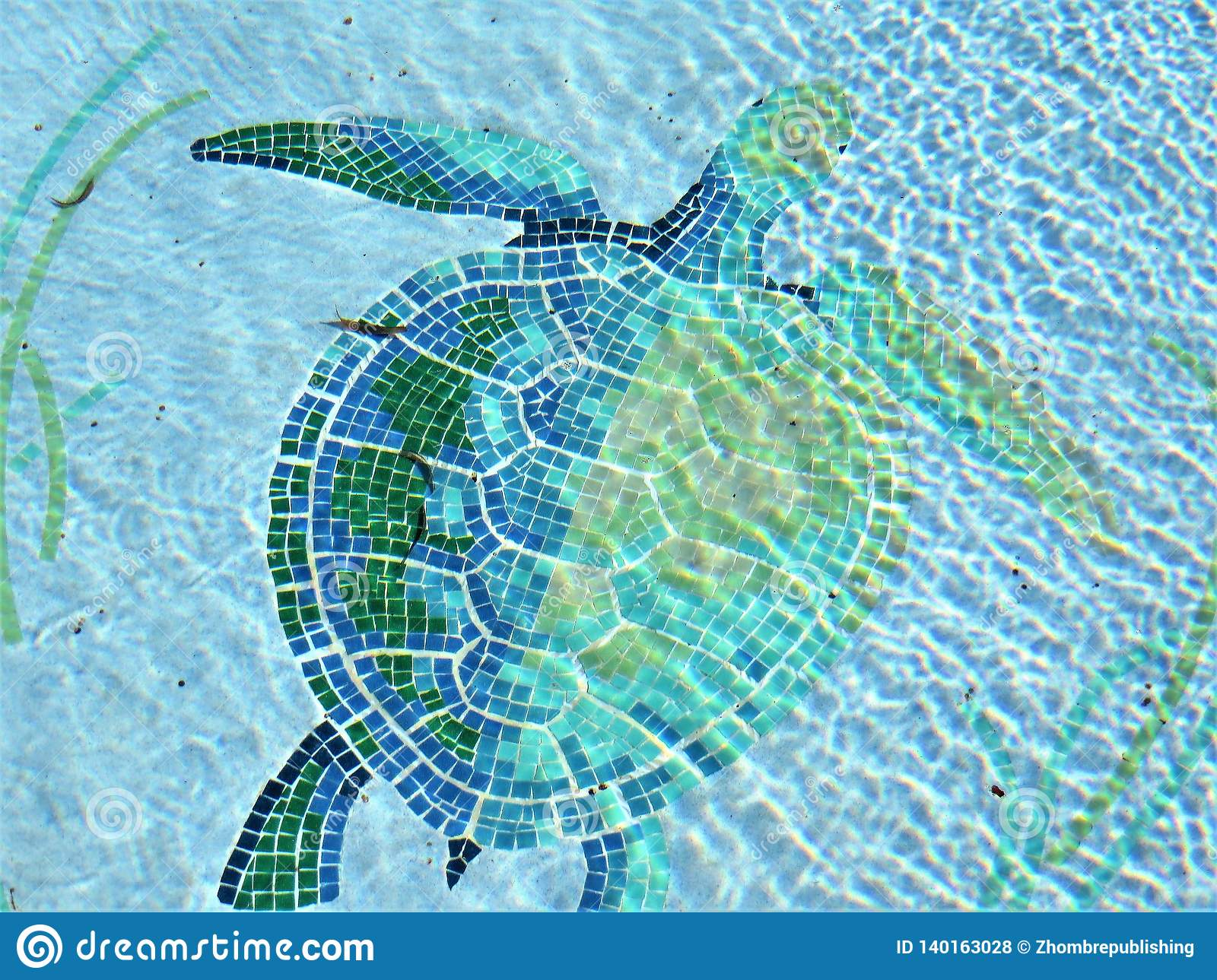 https www dreamstime com tile mosaic depicting swimming turtle decorating pool residential home florida image140163028
