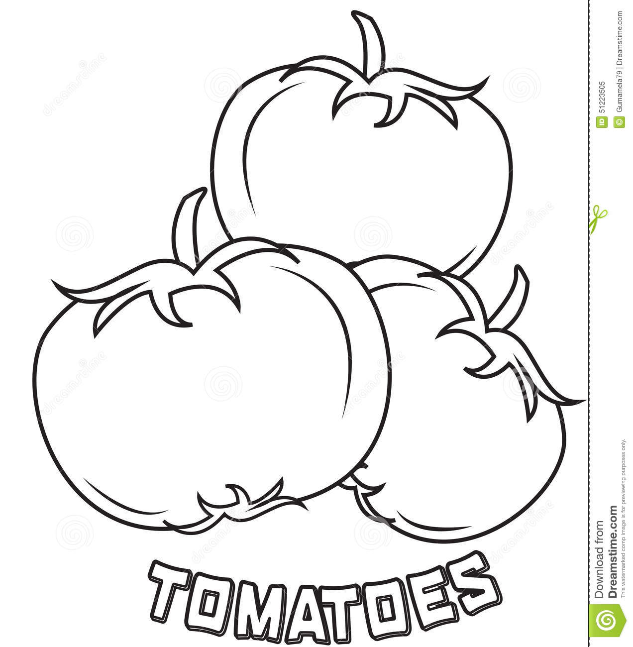 Royalty Free Stock Photo Tomatoes Coloring Page Image