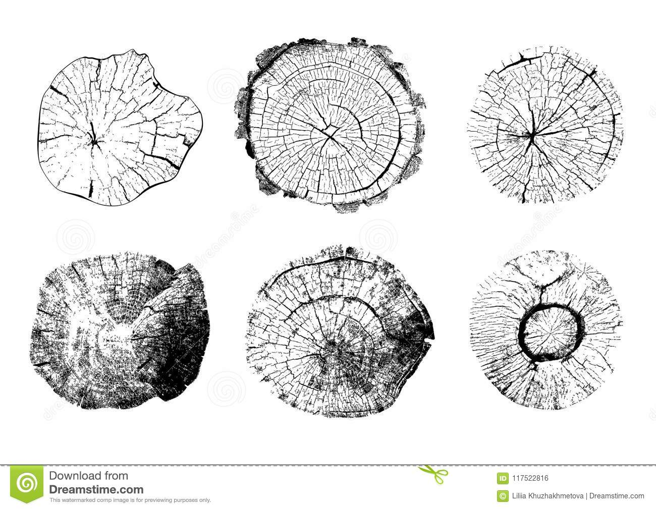 Top View Of Isolated Tree Stumps Illustrations Stock