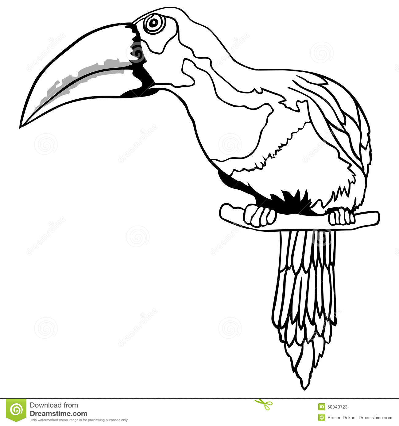 Toucan Stock Vector Illustration Of Drawing Hand