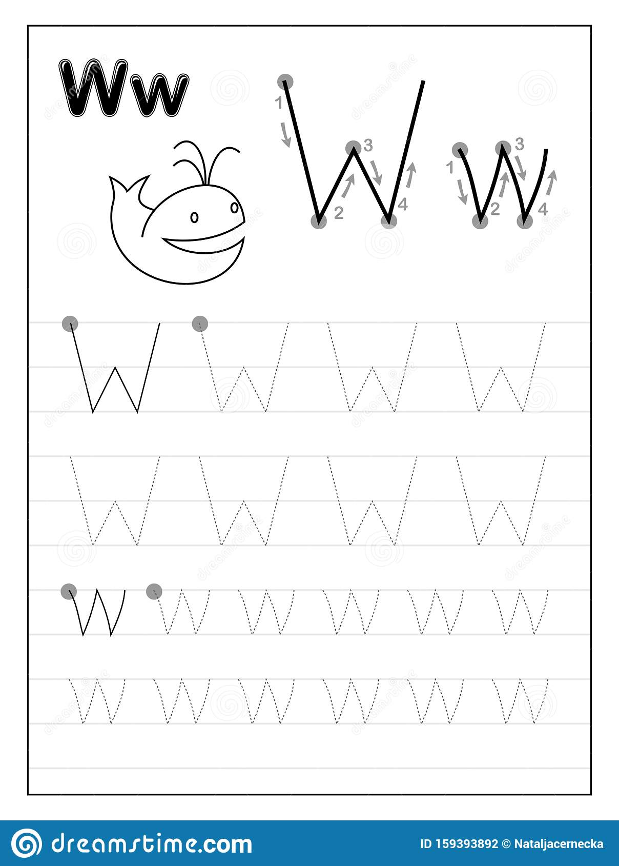Tracing Alphabet Letter W Black And White Educational
