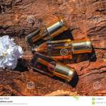 Traditional Arabic Incense Amber Musk And Oud Oil Stock Image Image Of Agarwood Fragrance 114396513