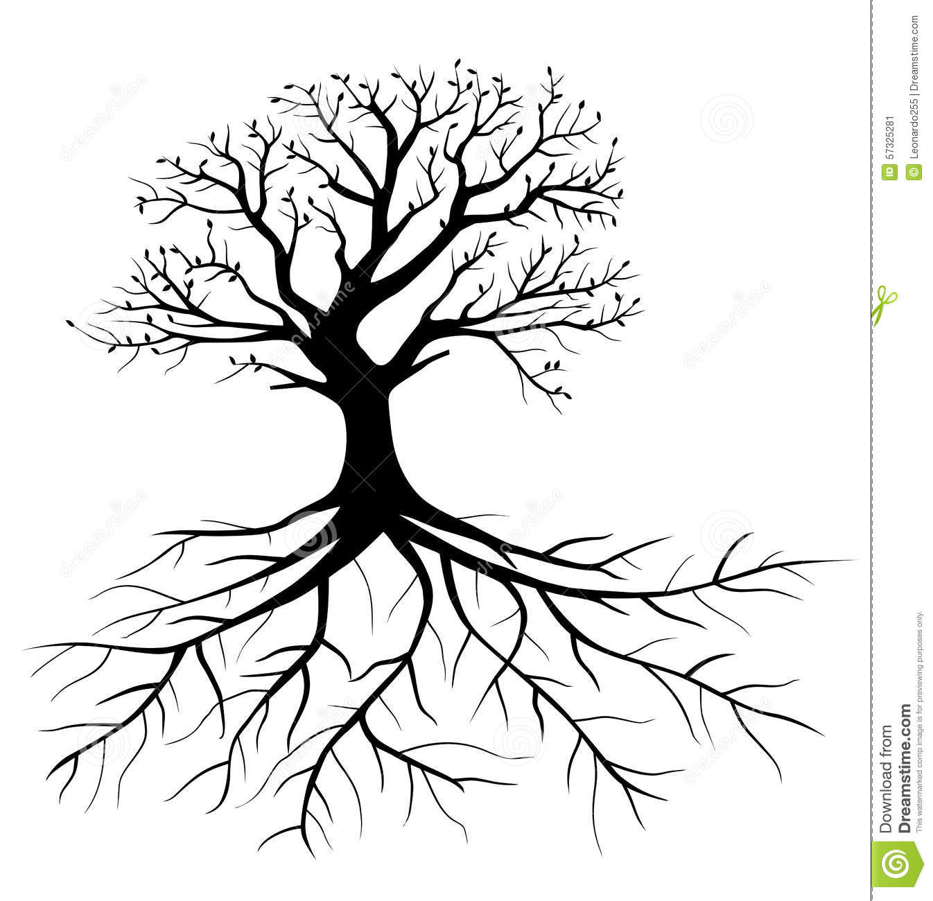 Tree With Roots Stock Vector Illustration Of Adult