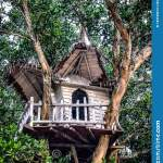 262 Kids Treehouse Photos Free Royalty Free Stock Photos From Dreamstime