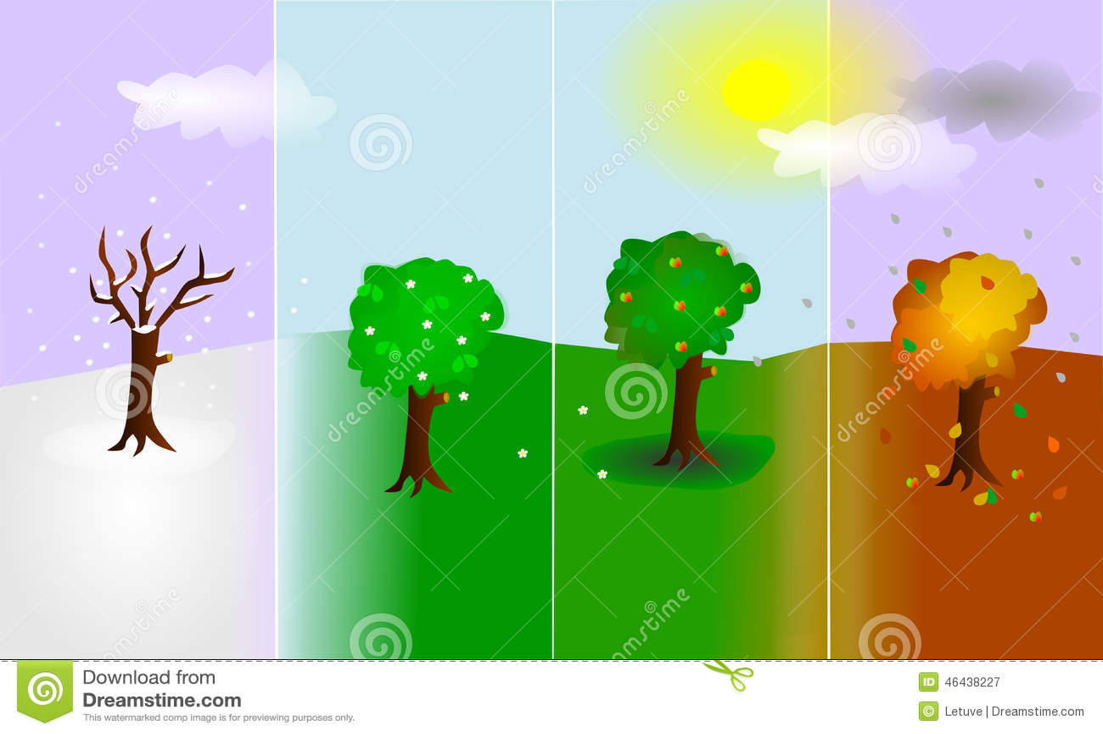 Trees In Four Seasons Stock Illustration