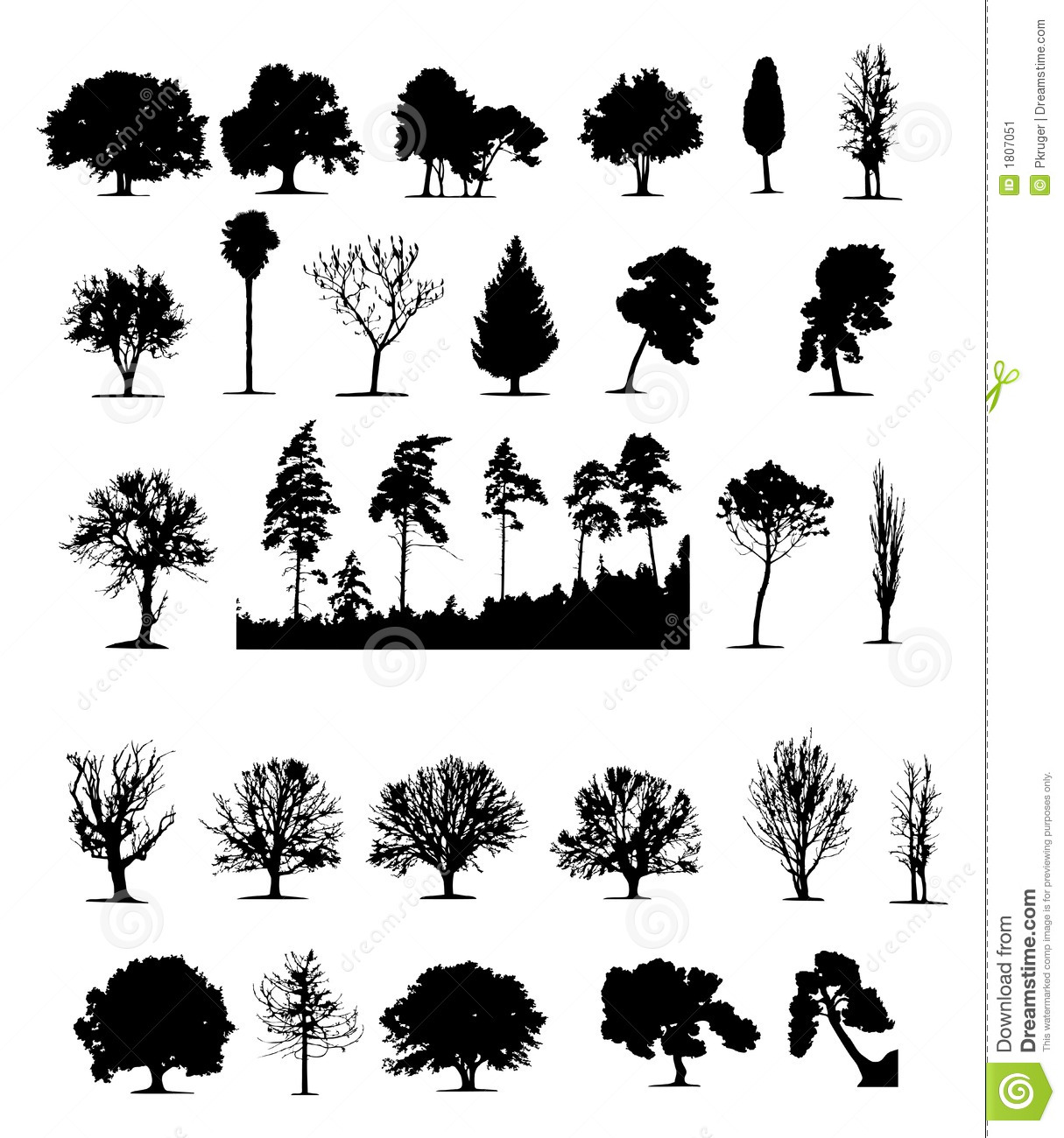 Trees Vector Stock Image