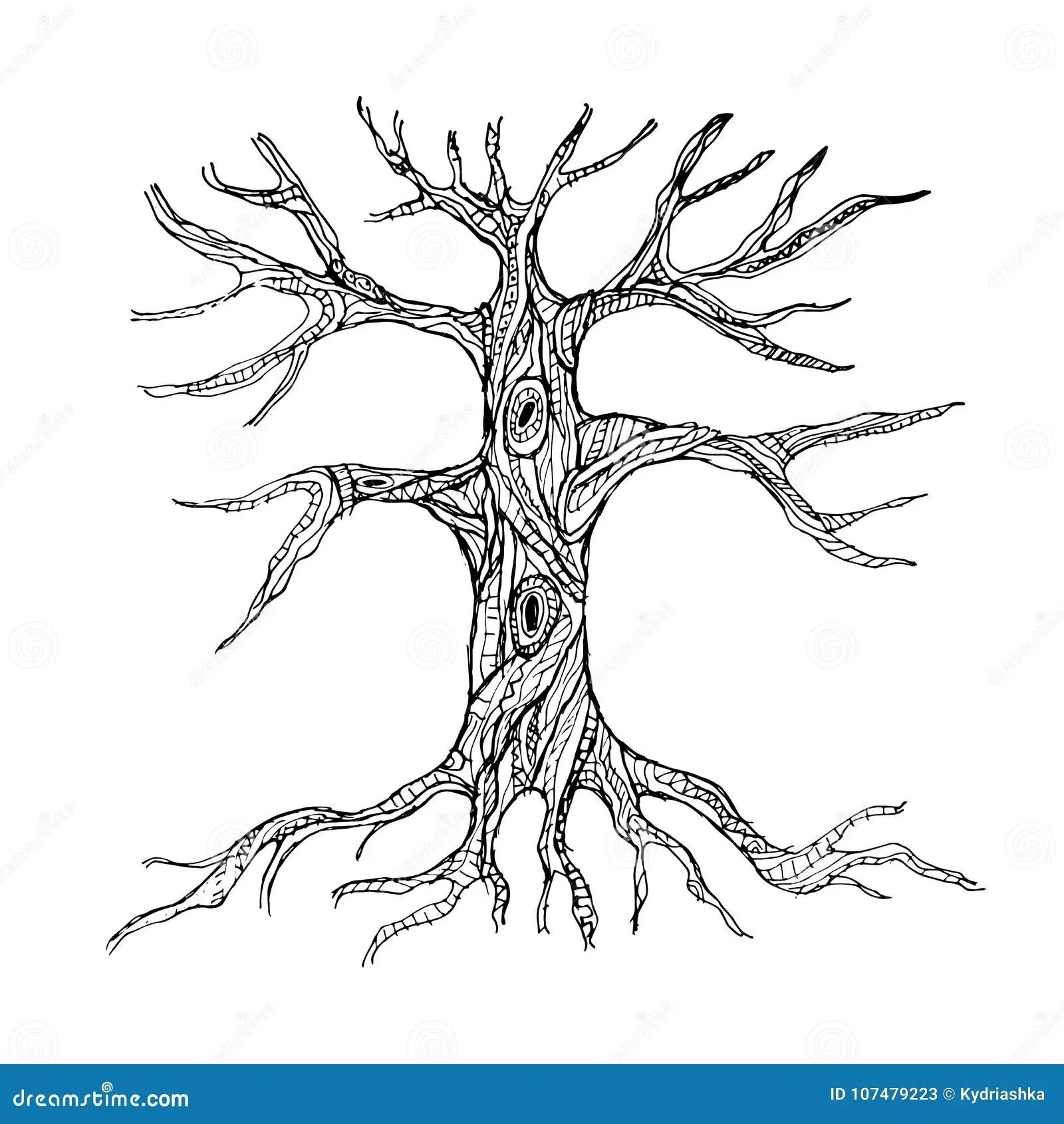 https fr dreamstime com tronc d arbre nu fleuri des racines image107479223
