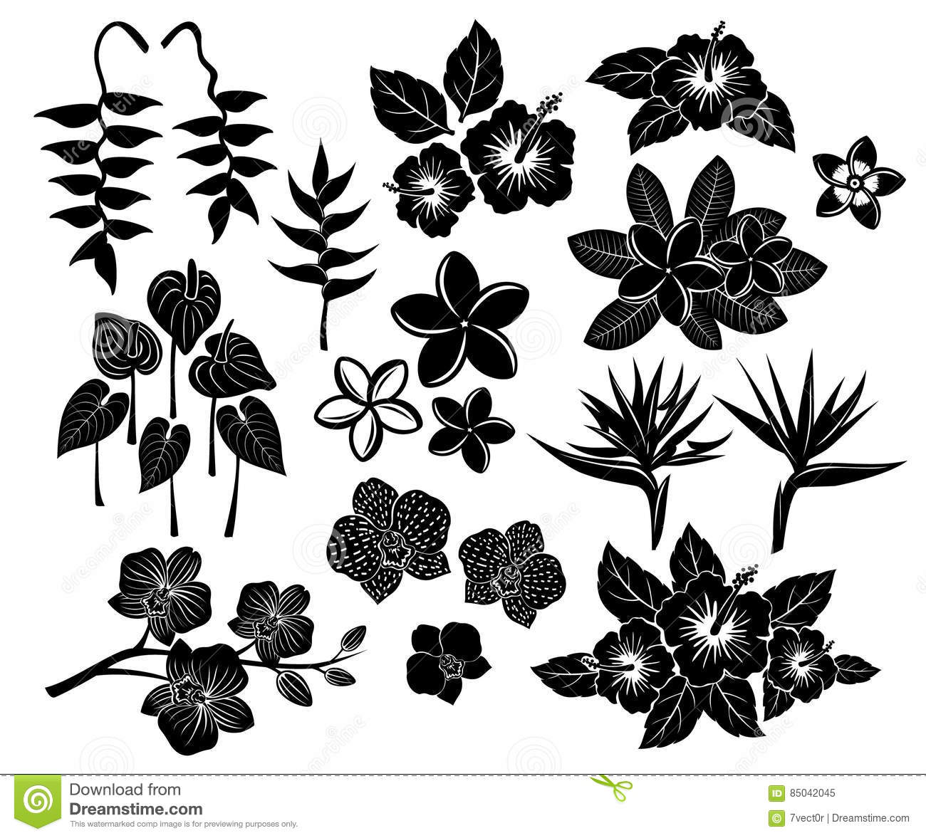 Tropical Exotic Flowers Silhouette Set Stock Illustration