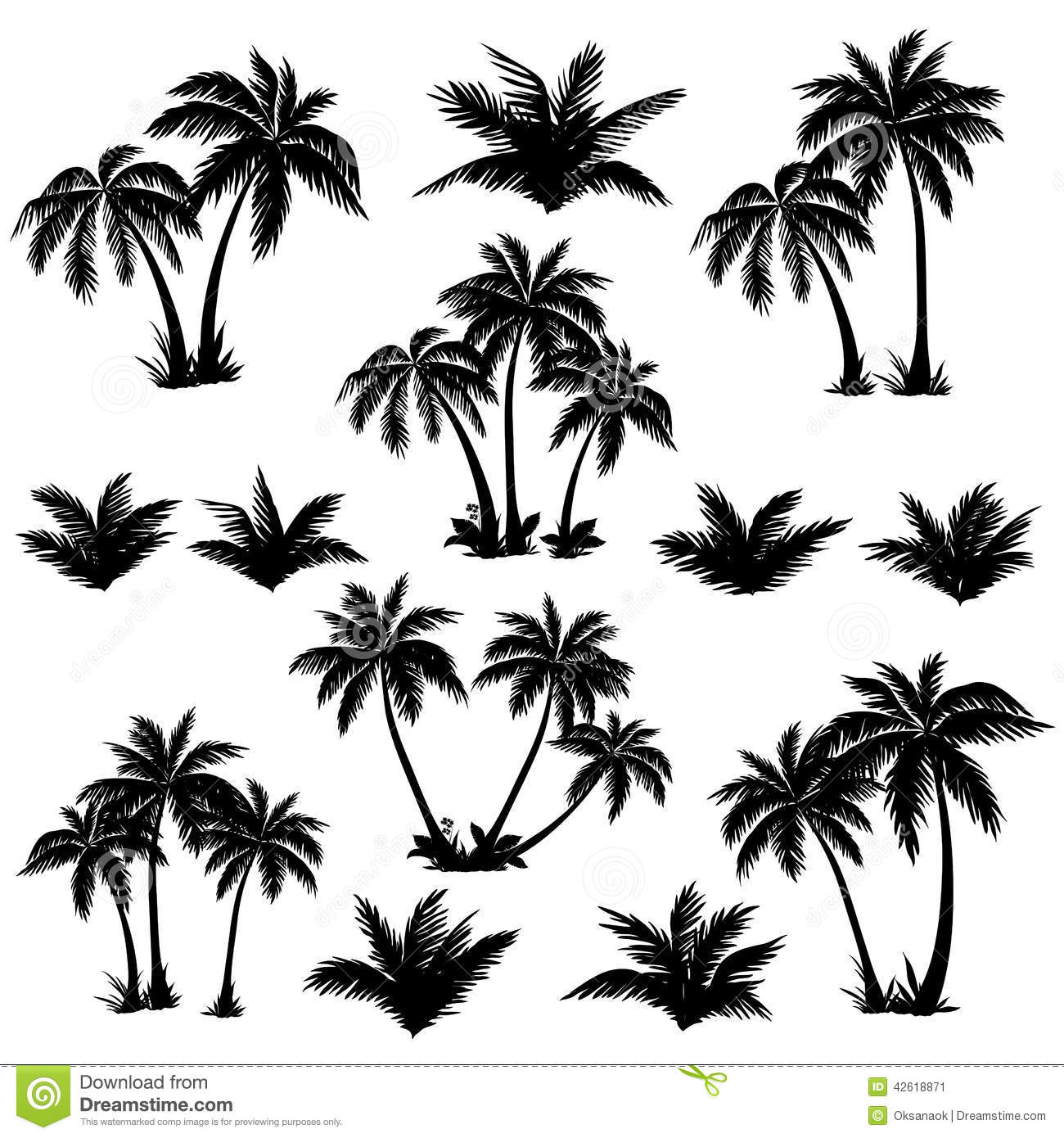 Tropical Palm Trees Set Silhouettes Stock Vector
