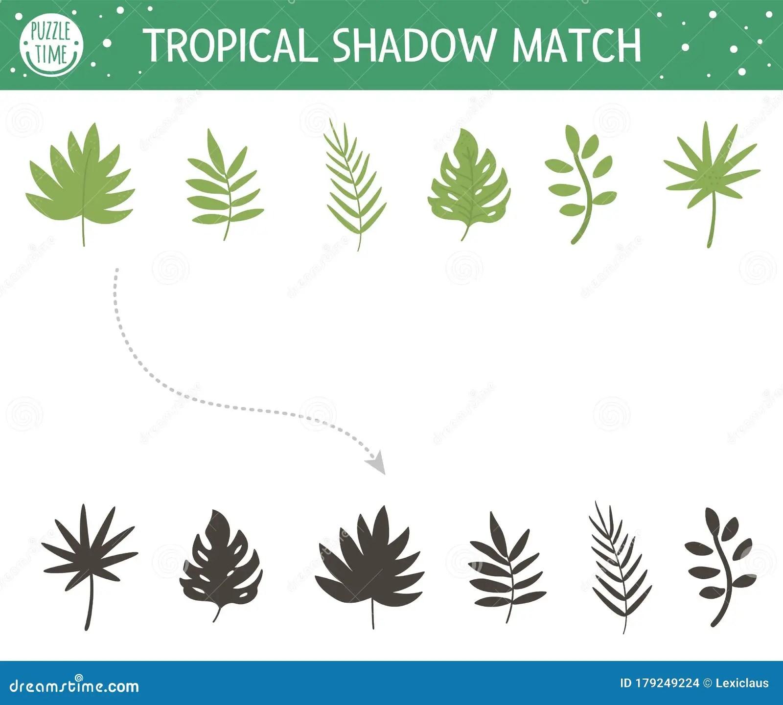 Tropical Shadow Matching Activity For Children Preschool