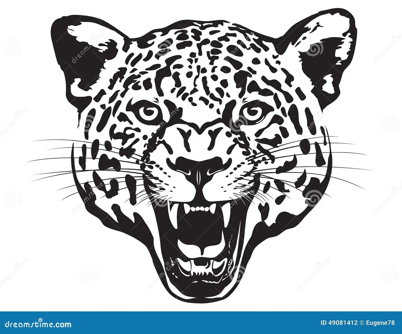 Tete De Leopard Illustration Illustration De Vecteur