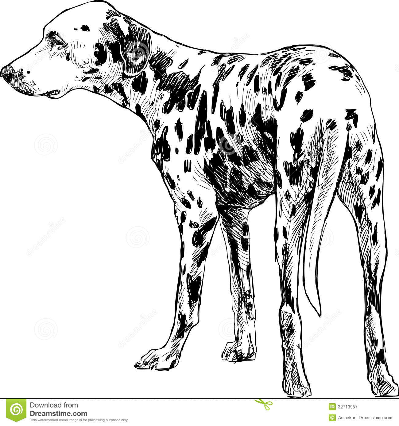 Turning Dalmatians Royalty Free Stock Photography