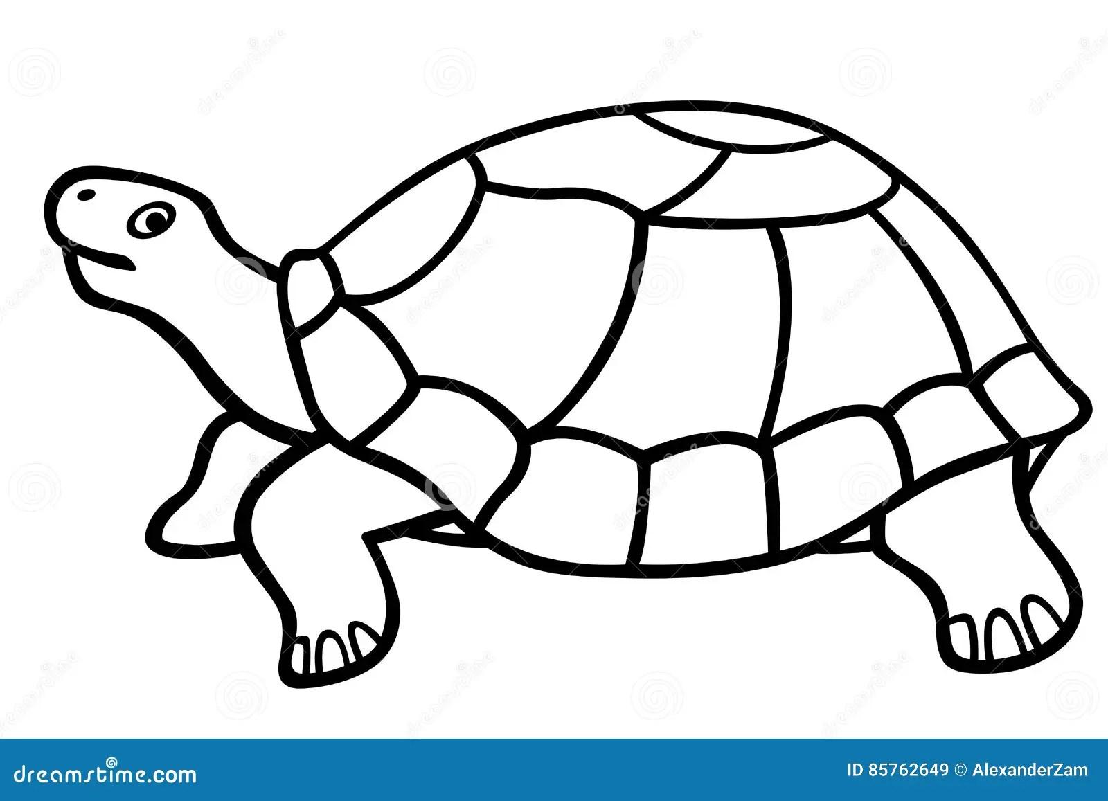 Turtle Contour Icon Stock Vector Illustration Of Tortoise