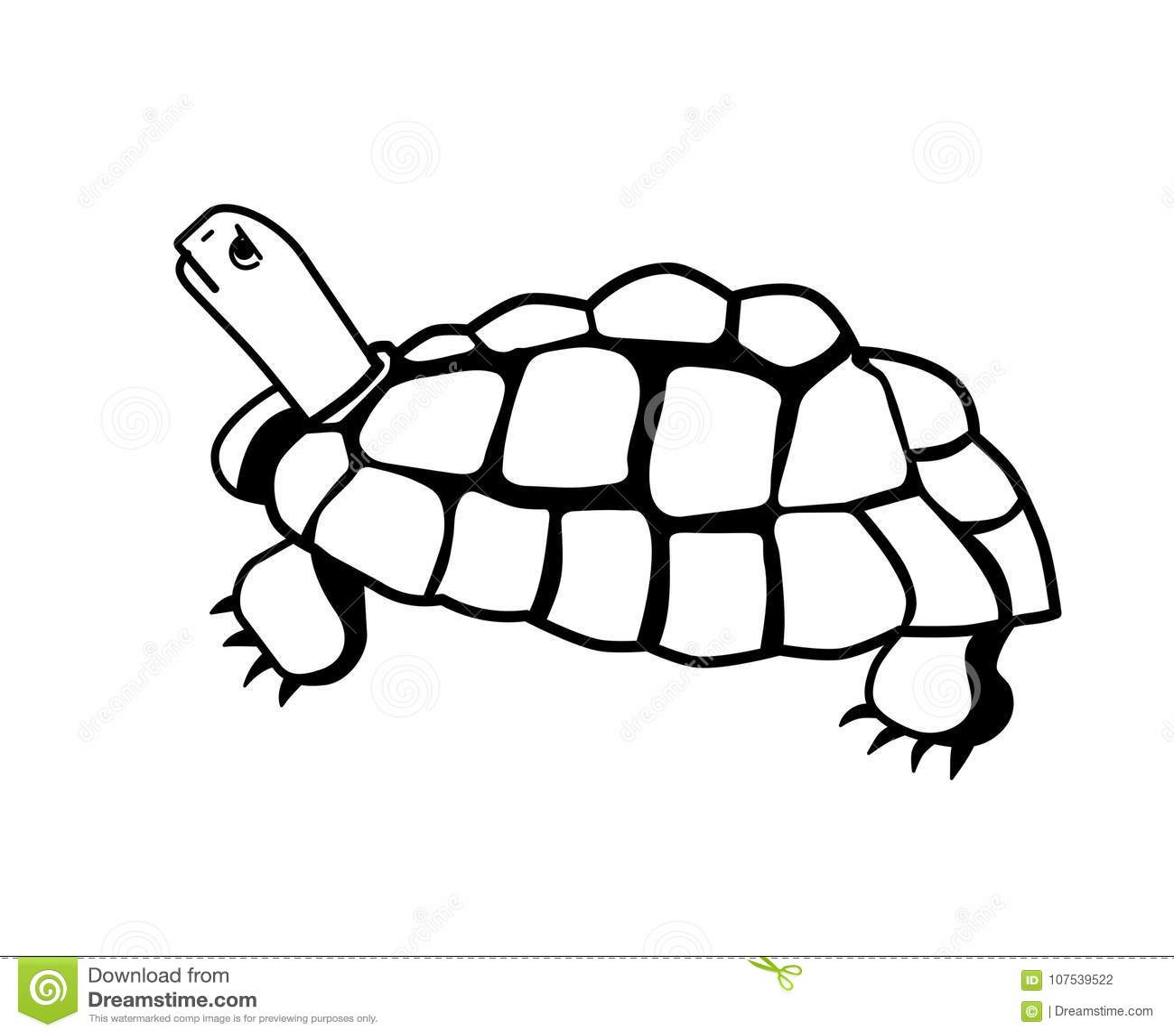 Turtle Design Clip Art Stock Vector Illustration Of