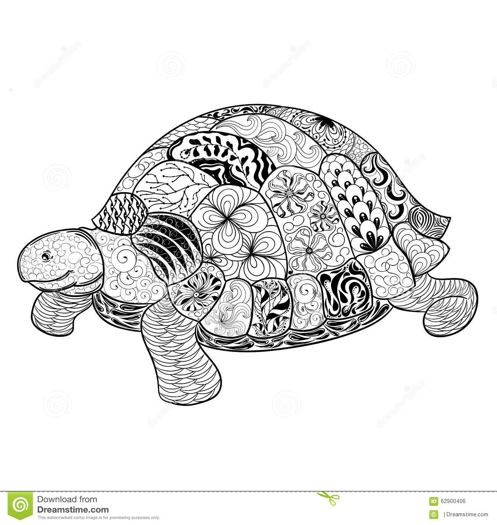 Turtle Doodle Illustration Stock Vector Illustration Of