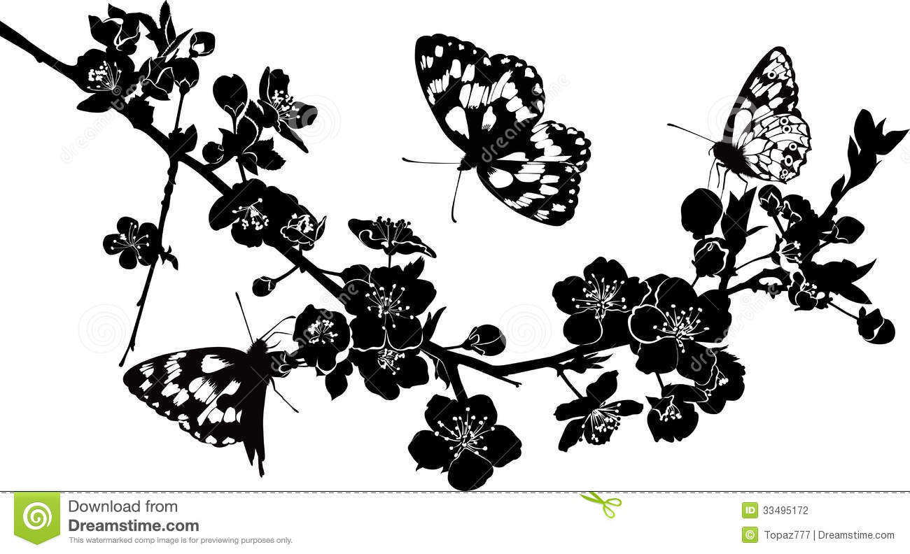 Twig Cherry Blossoms And Butterflies Stock Vector