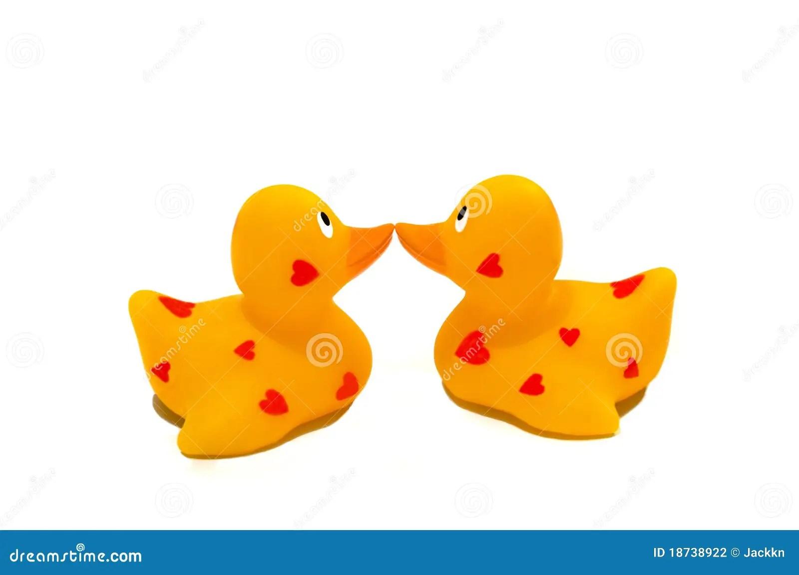 Two Ducks Kiss Stock Photography Image 18738922