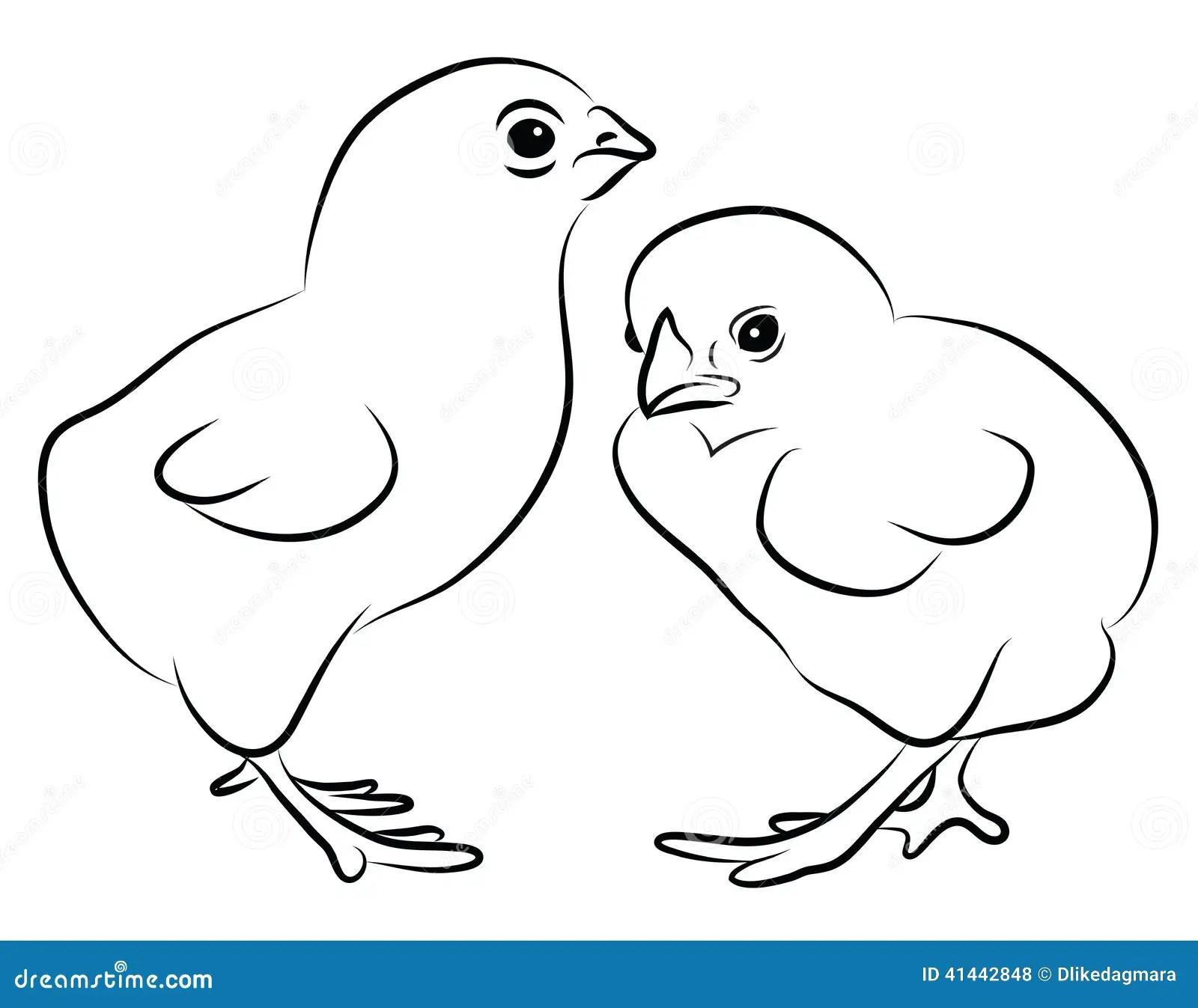 Two Little Chicks Stock Vector
