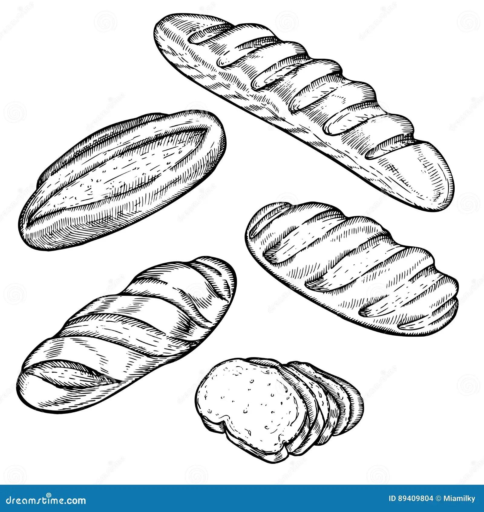 Uitstekende Hand Getrokken De Bakkerijreeks Van De Schets