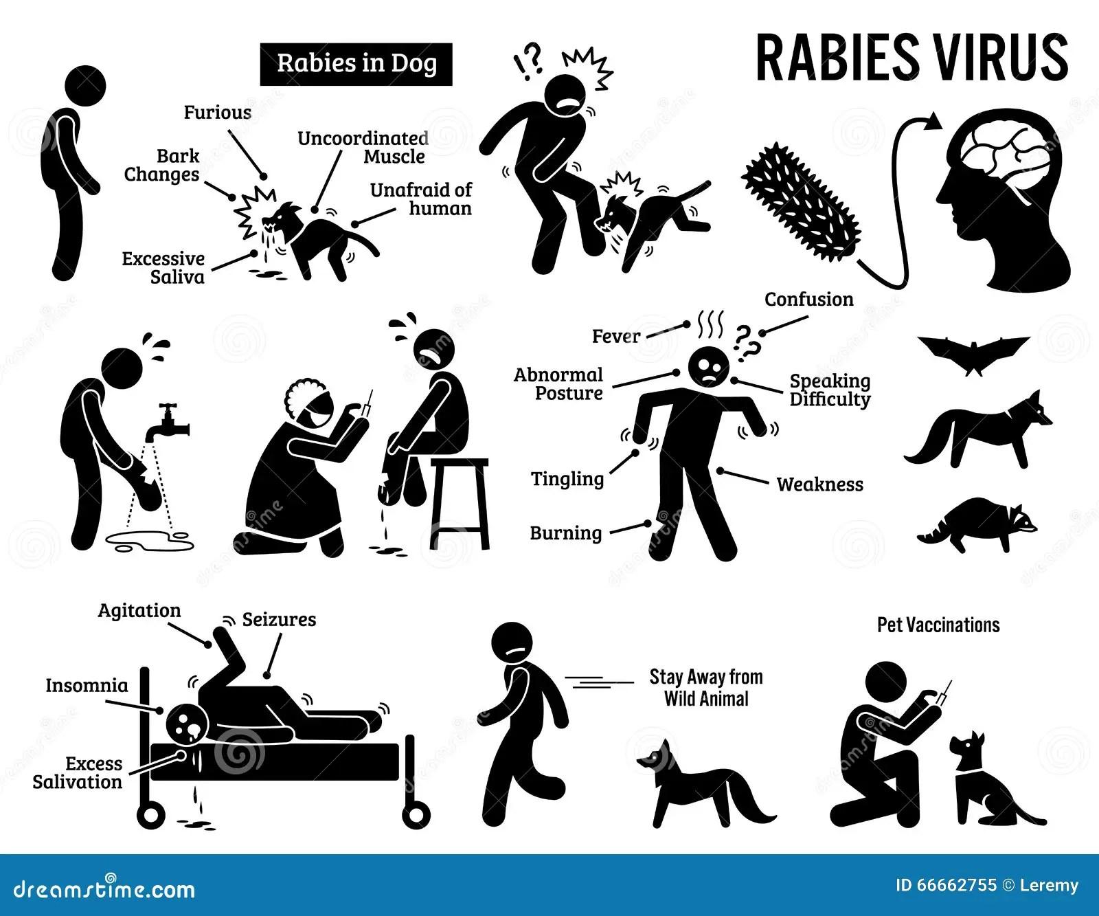 Virus De Raiva Em Clipart Humano E Animal Ilustracao Do