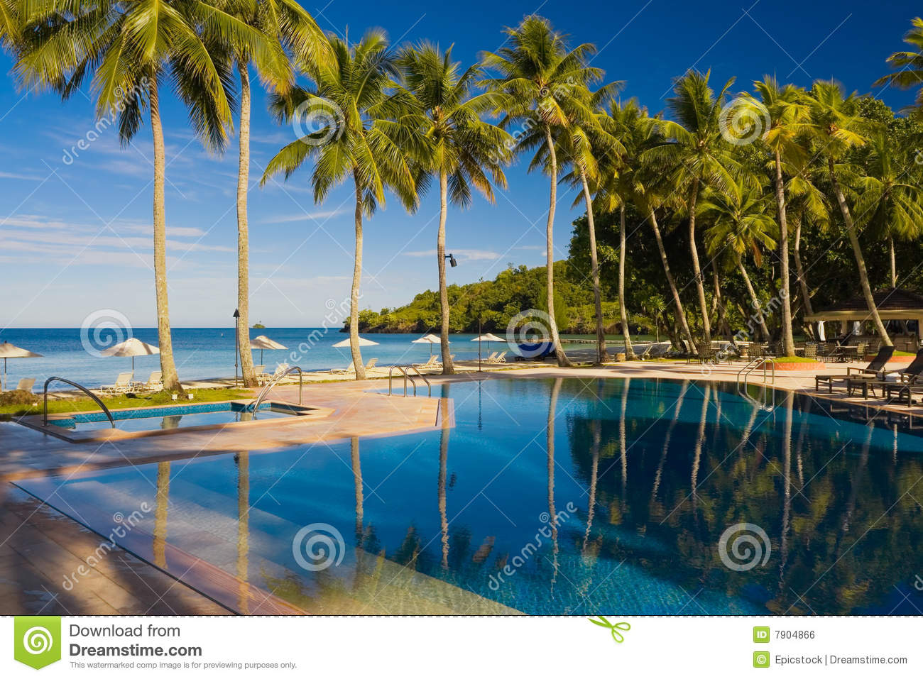 Vacation Resort Pool With Palm Trees Royalty Free Stock