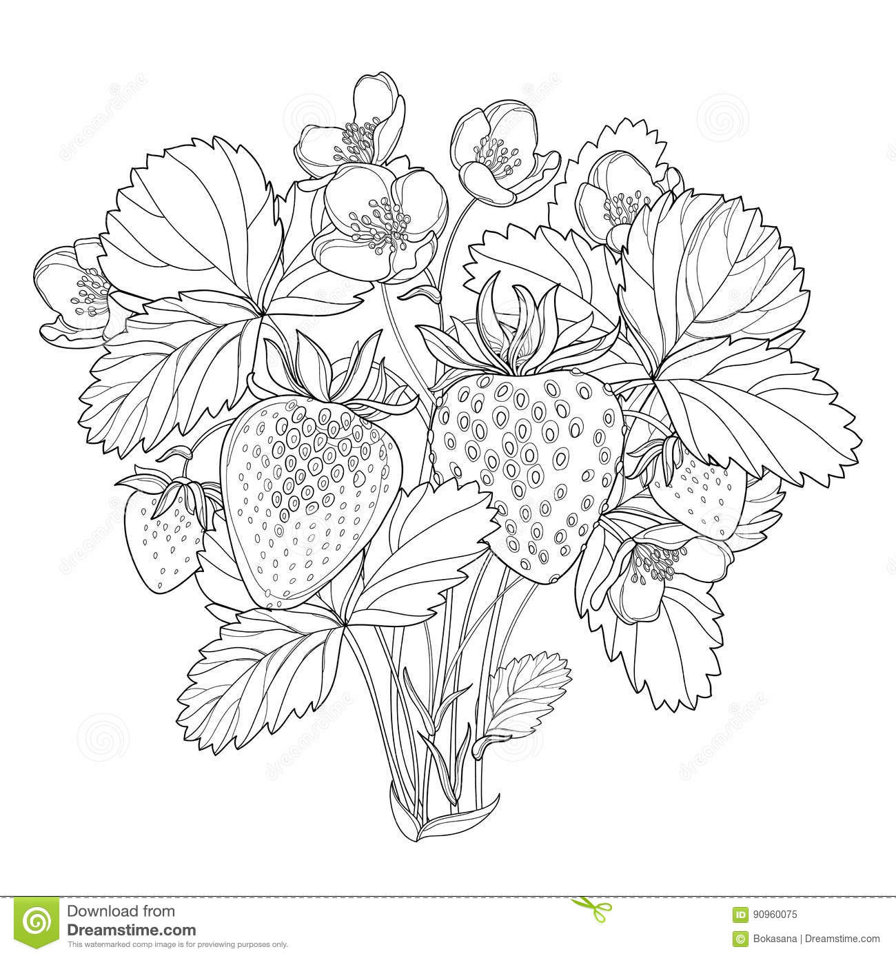 Vector Bush With Outline Strawberry With Berry Flower And
