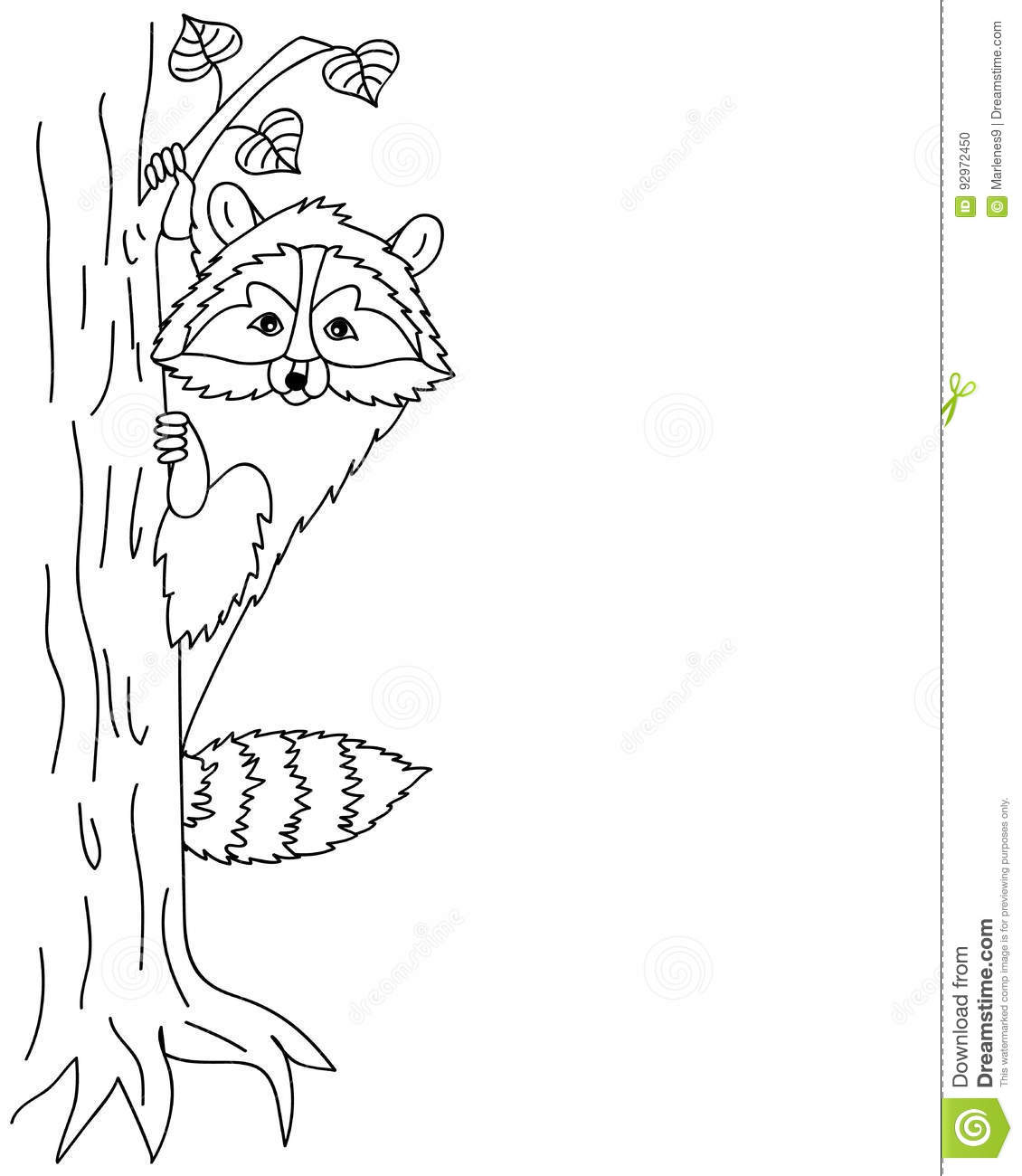 Vector Cute Raccoon Sitting On Tree Coon Clipart Stock Vector