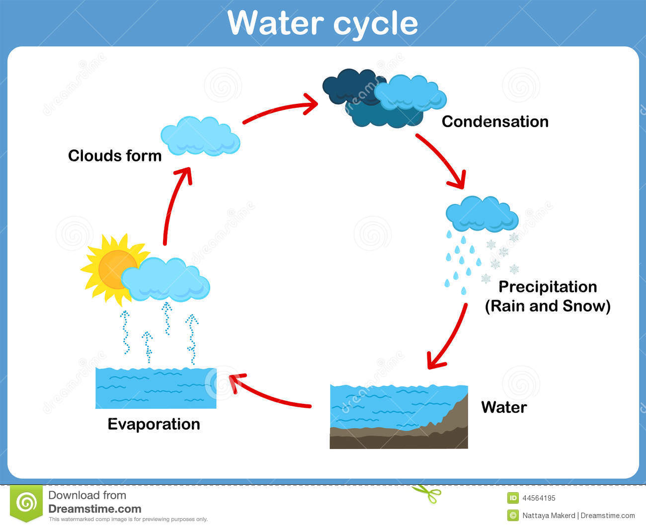 Vector Cycle Of Water For Kids Stock Vector