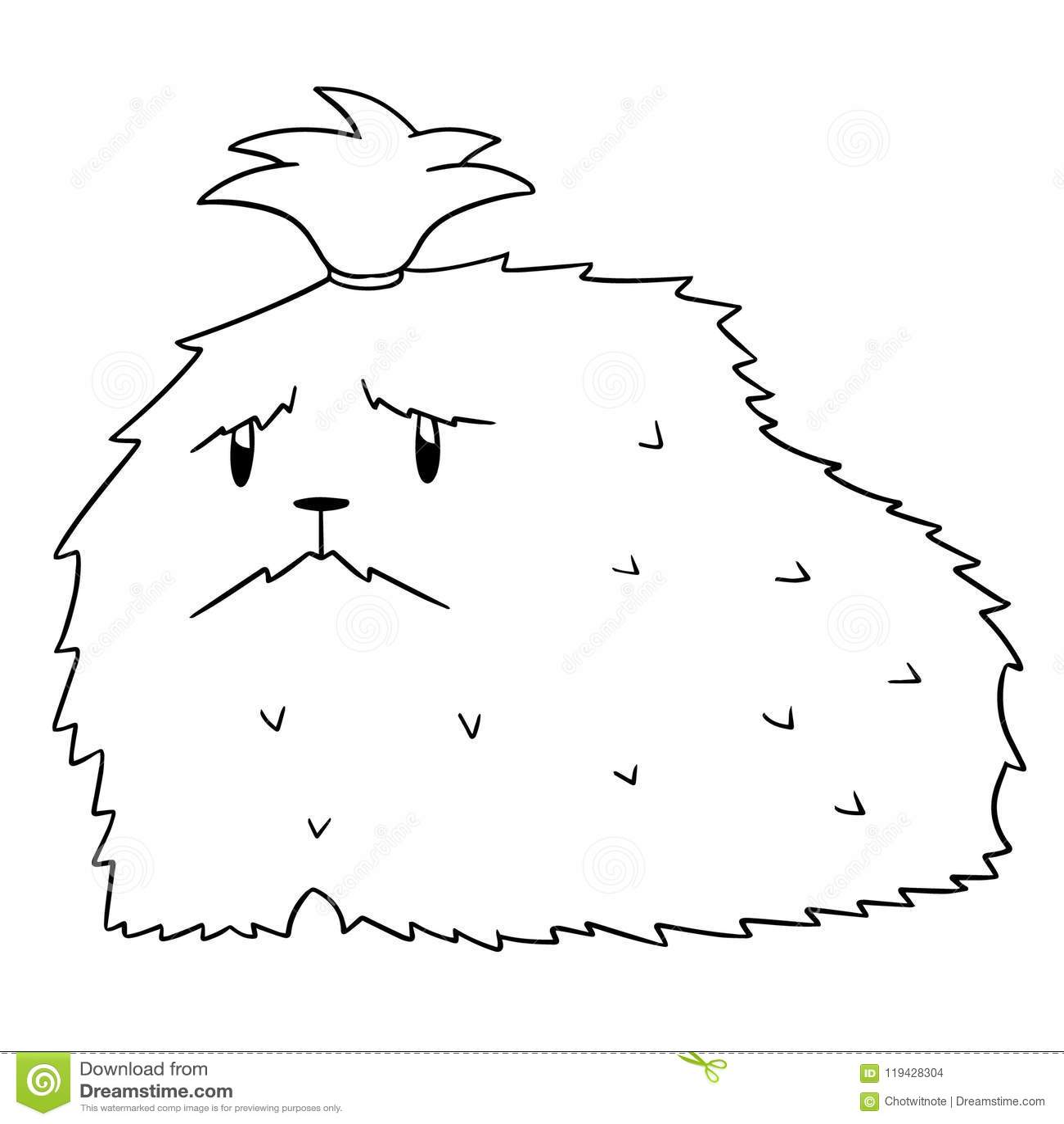 Vector Of Dog Shih Tzu Stock Vector Illustration Of