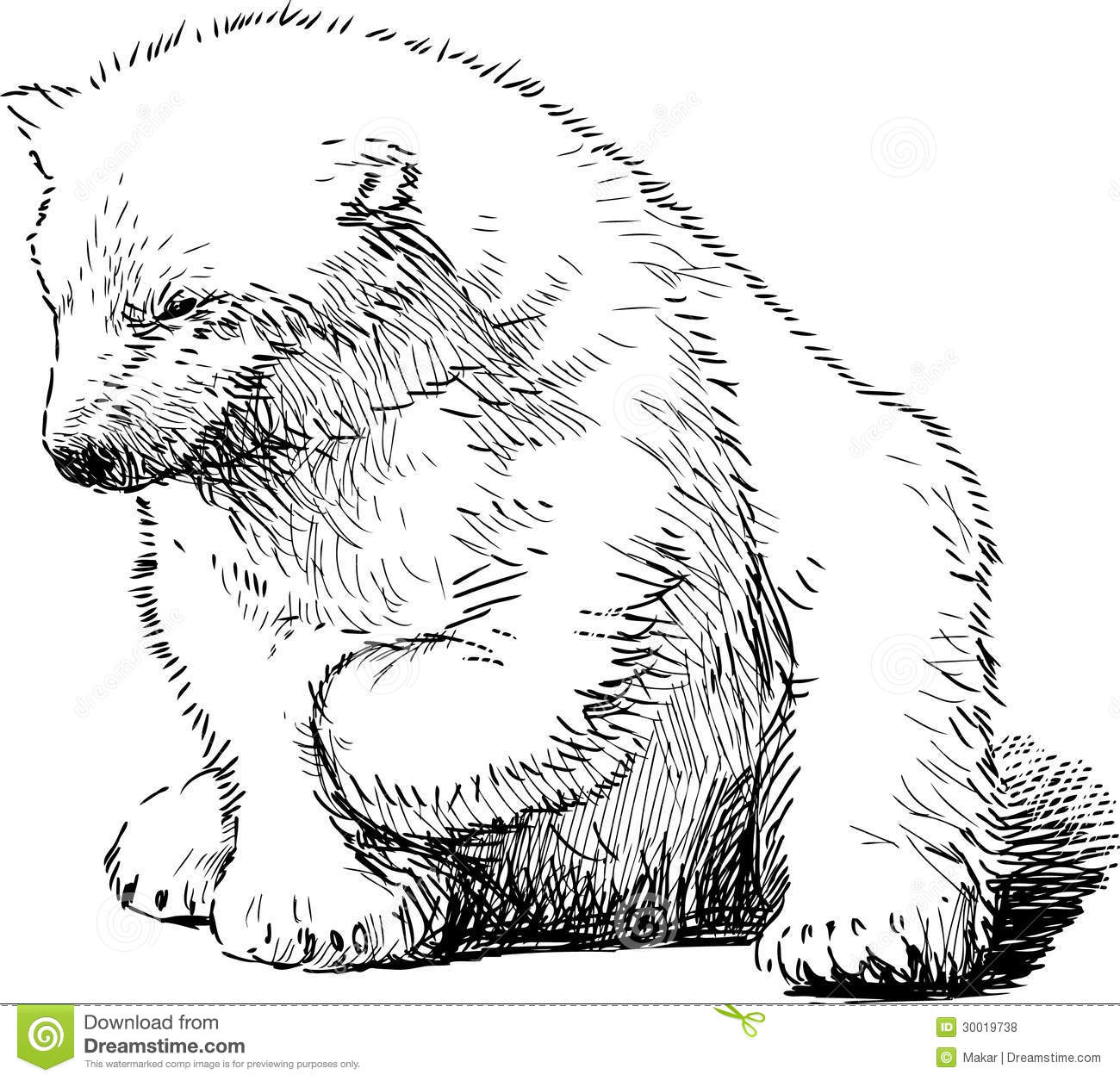 Sitting Polar Bear Royalty Free Stock Photos