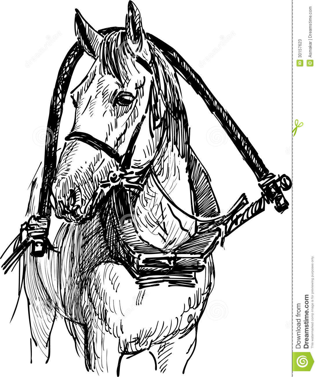 Harnessed Horse Stock Vector Illustration Of Hand