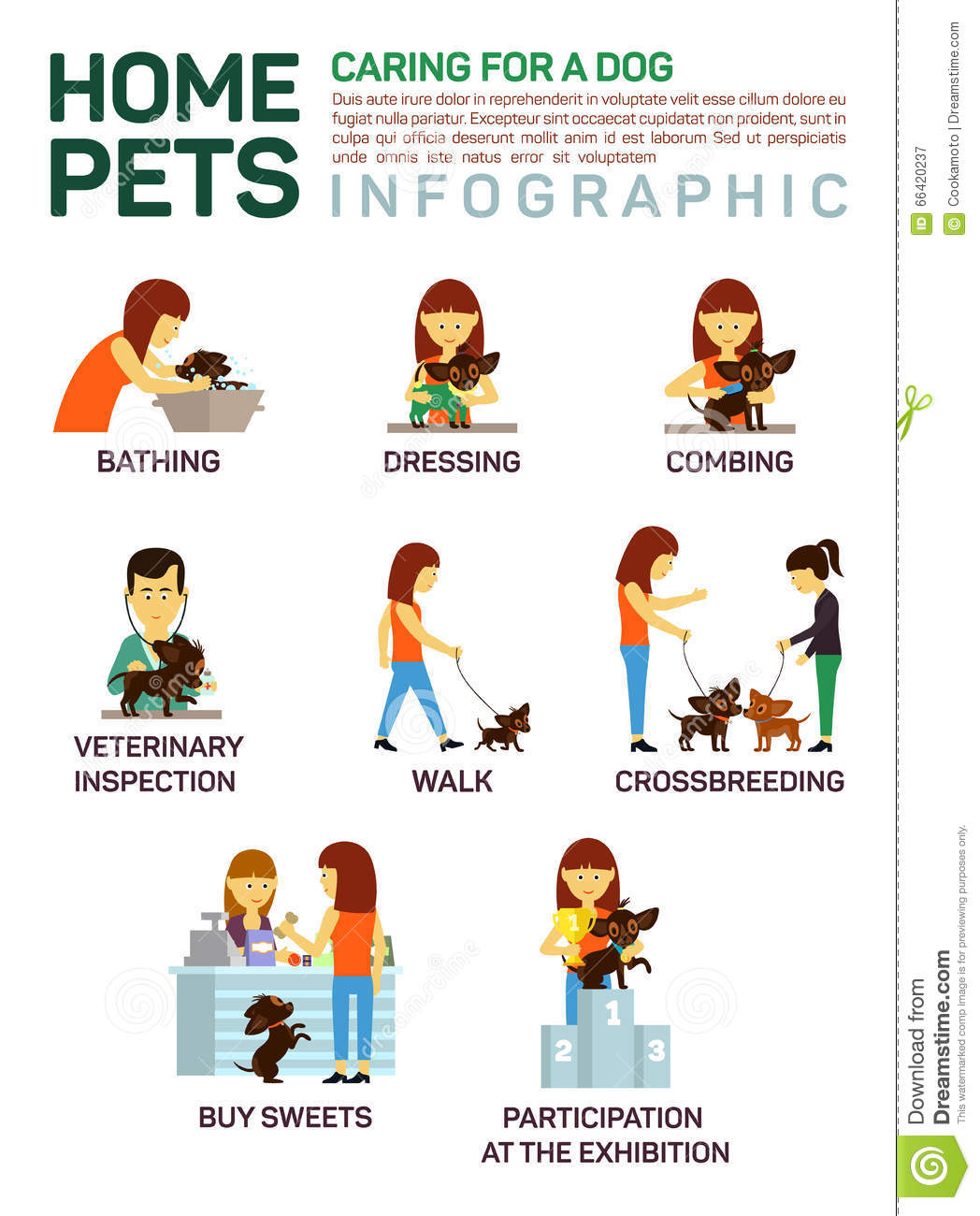 Vector Flat Illustration Infographic Of Caring About Pets