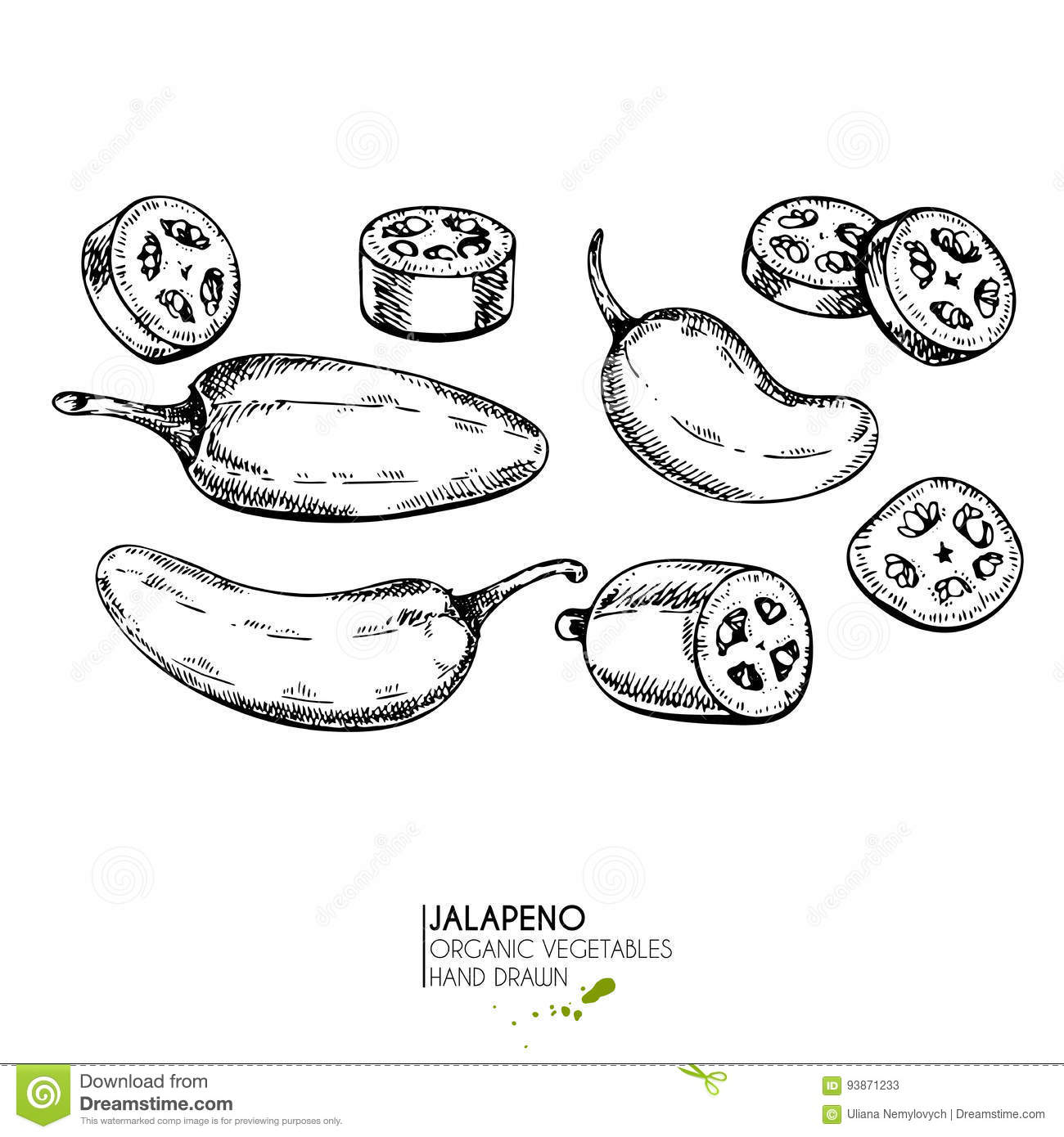 Jalapeno Cartoons Illustrations Amp Vector Stock Images
